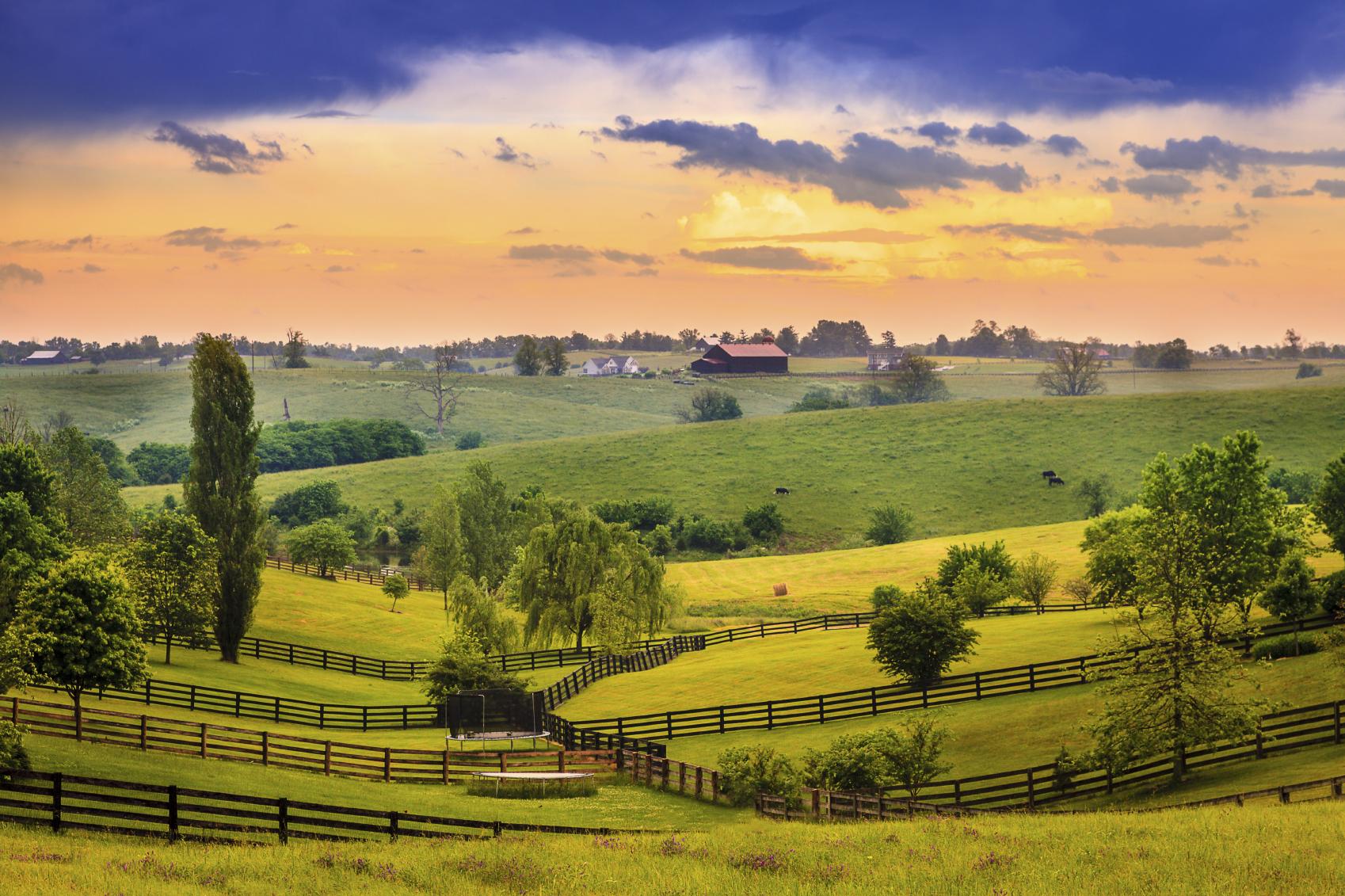 United Ways in Kentucky | United Way Worldwide