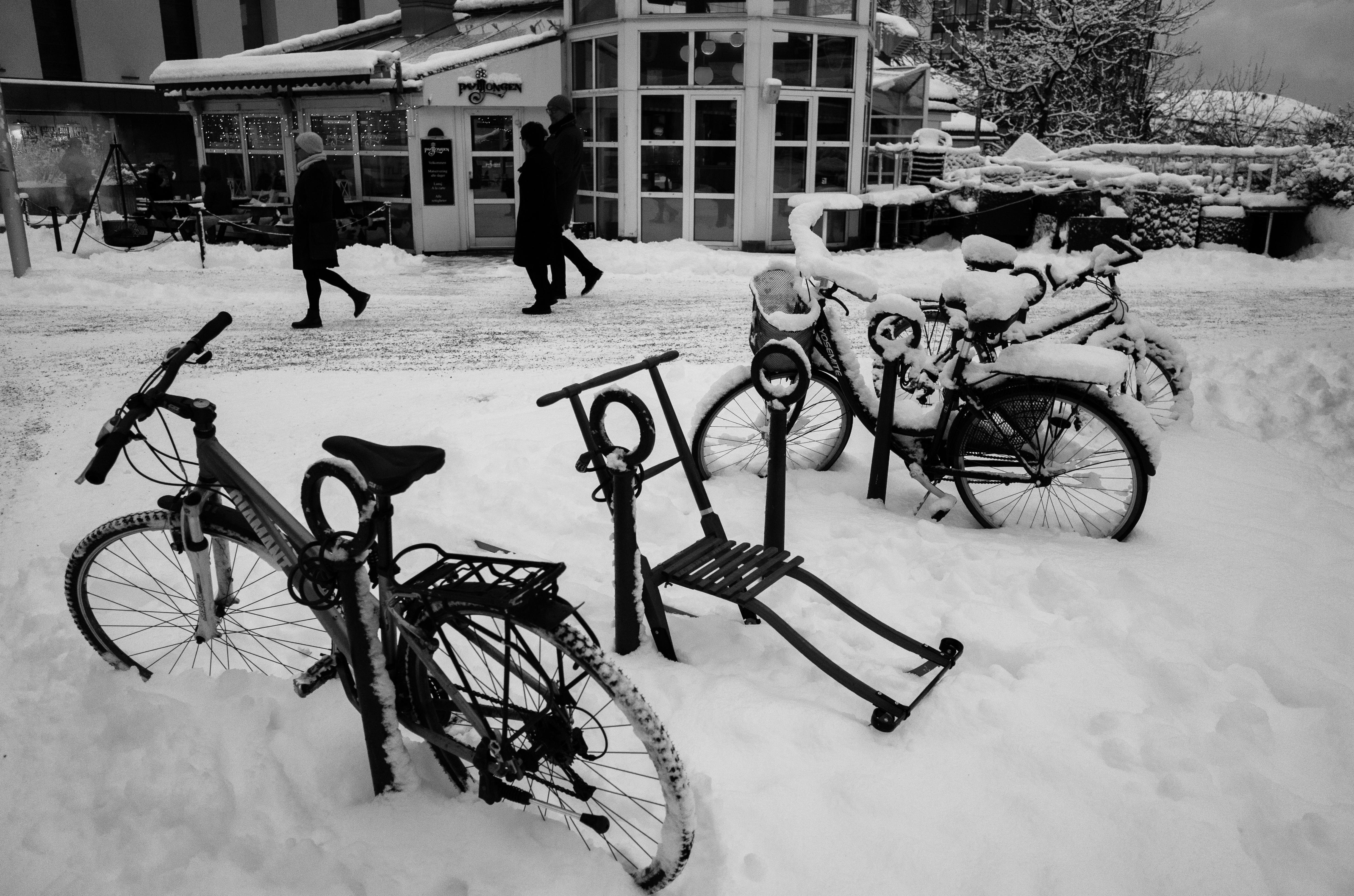 Kicksled & Bicycles in snow. Bodø, Norway, Bike, Black, Blackandwhite, GR, HQ Photo