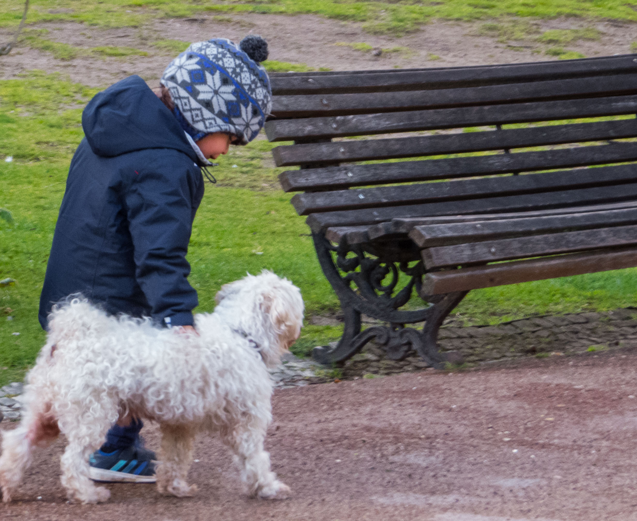 Kid with a puppy dog, People, Park, Portugal, Puppy, HQ Photo