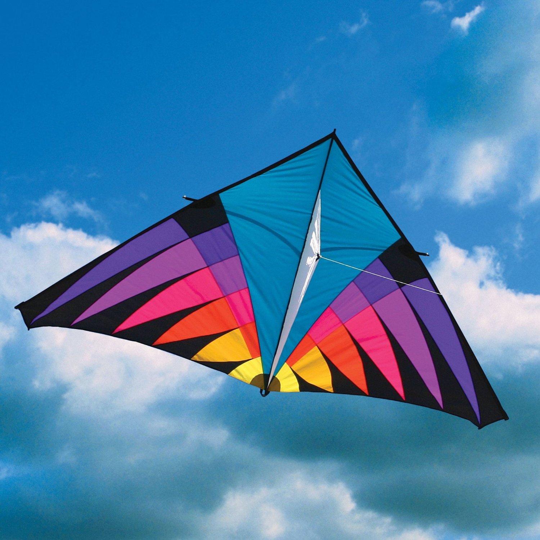 Rivera Highlighter Delta Kite GIGANTIC RipStop Nylon Material ...