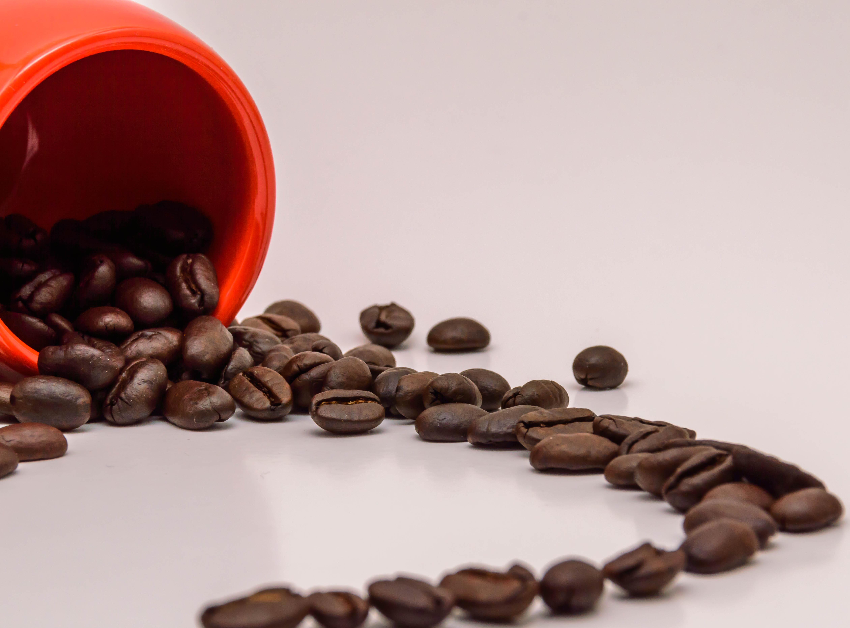 Wallpaper : red, closeup, chocolate, caffeine, small ...