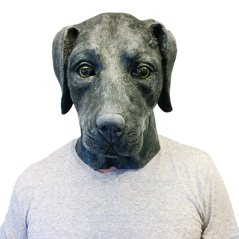 Amazon.com: Black Labrador Retriever Dog Costume Face Mask - Off the ...