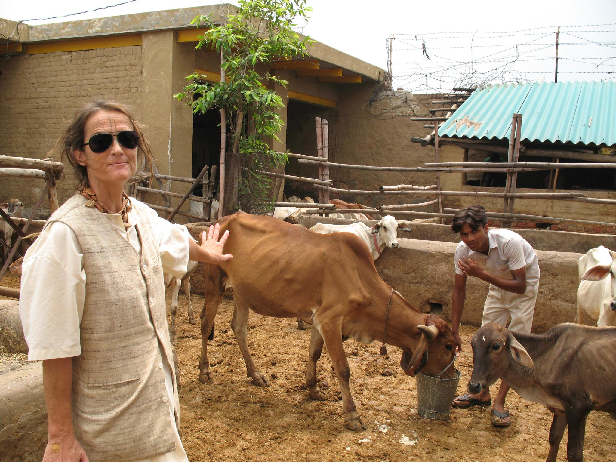 This 59-Year-Old German Woman Has Saved 1,200 Cows in Mathura!