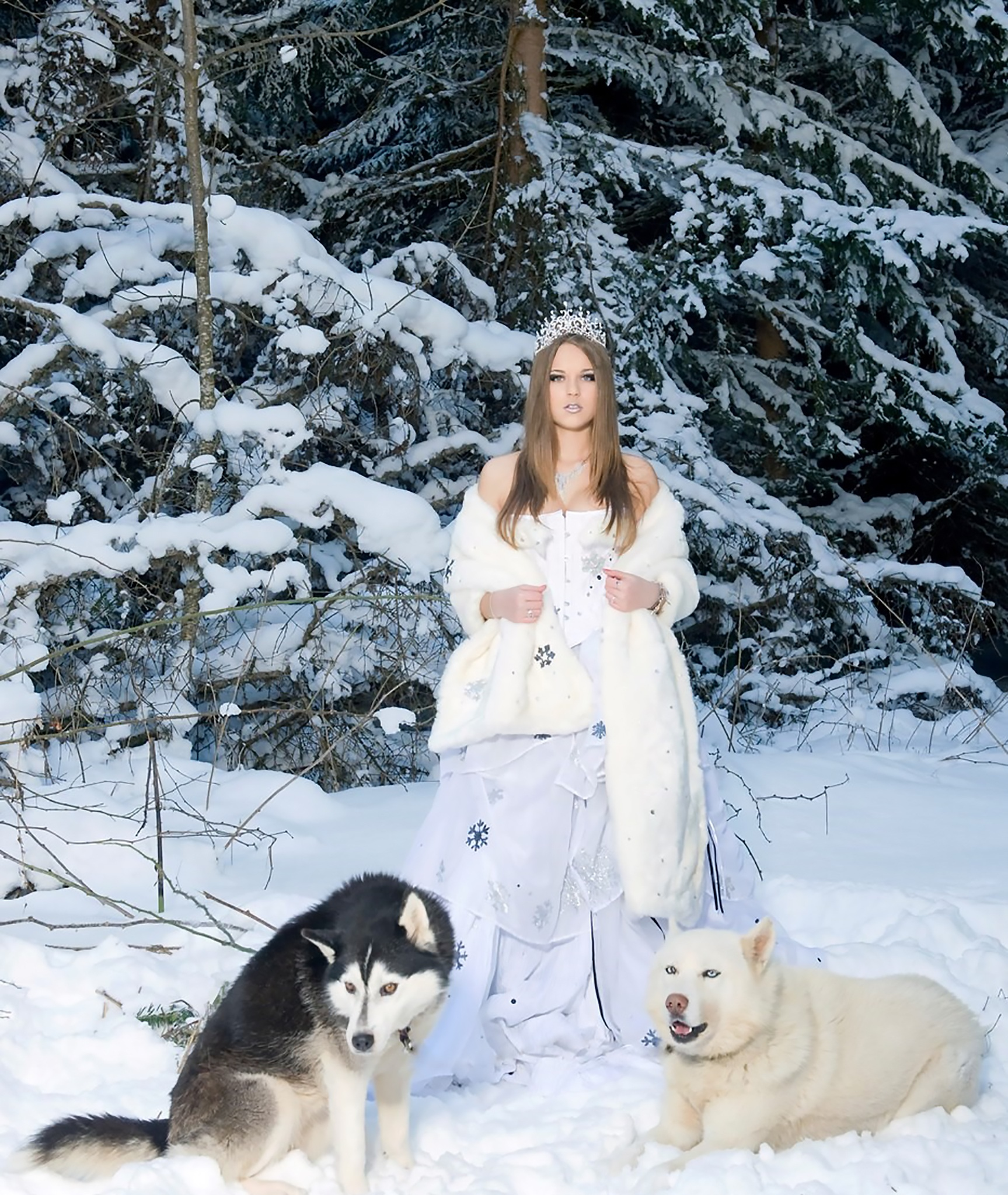 Lady with Wolves, Animal, Frozen, Girl, Ice, HQ Photo