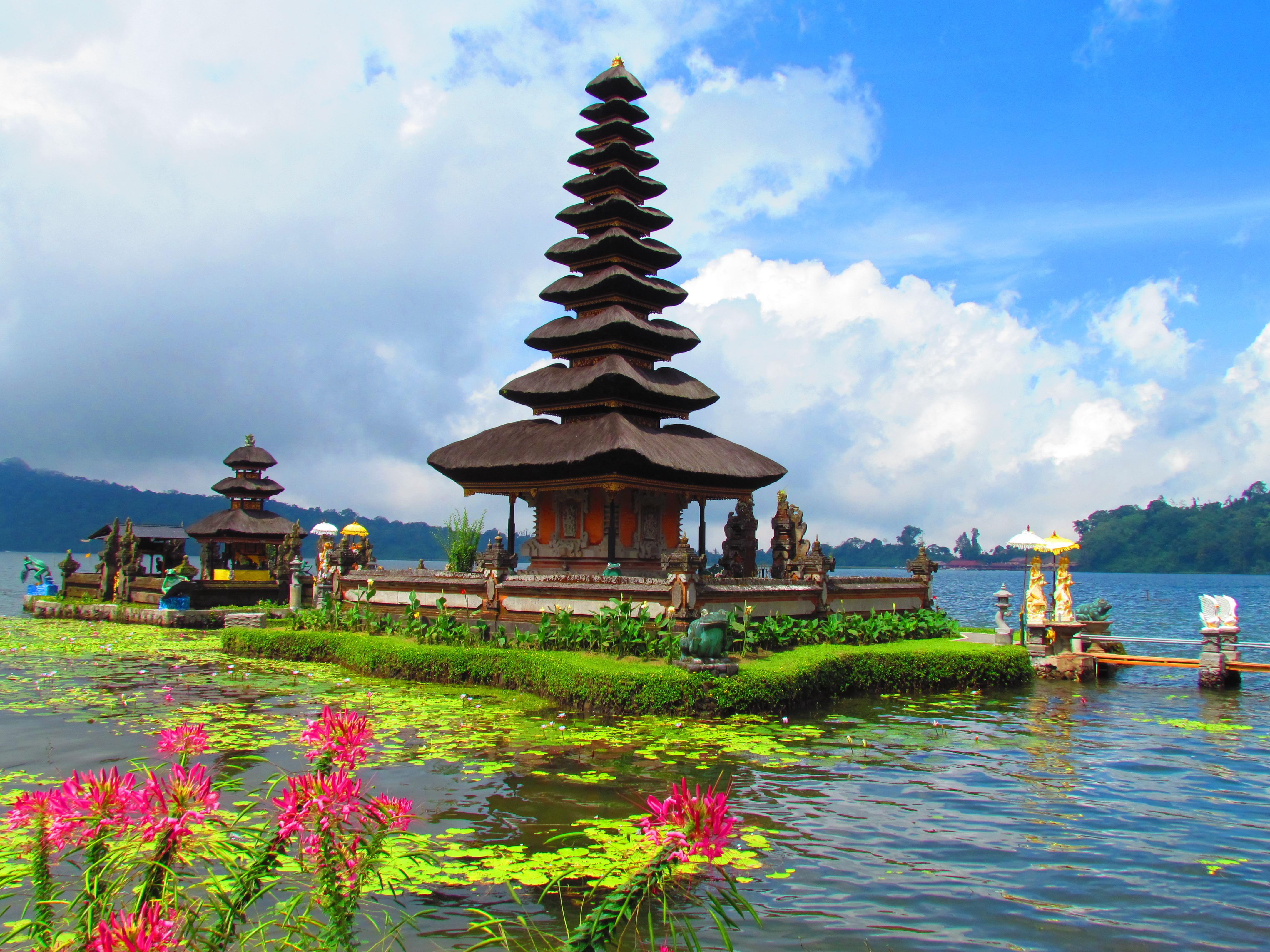 MARI8 – North Bali (Lovina)-Bedugul Tour | Mari Bali Tours