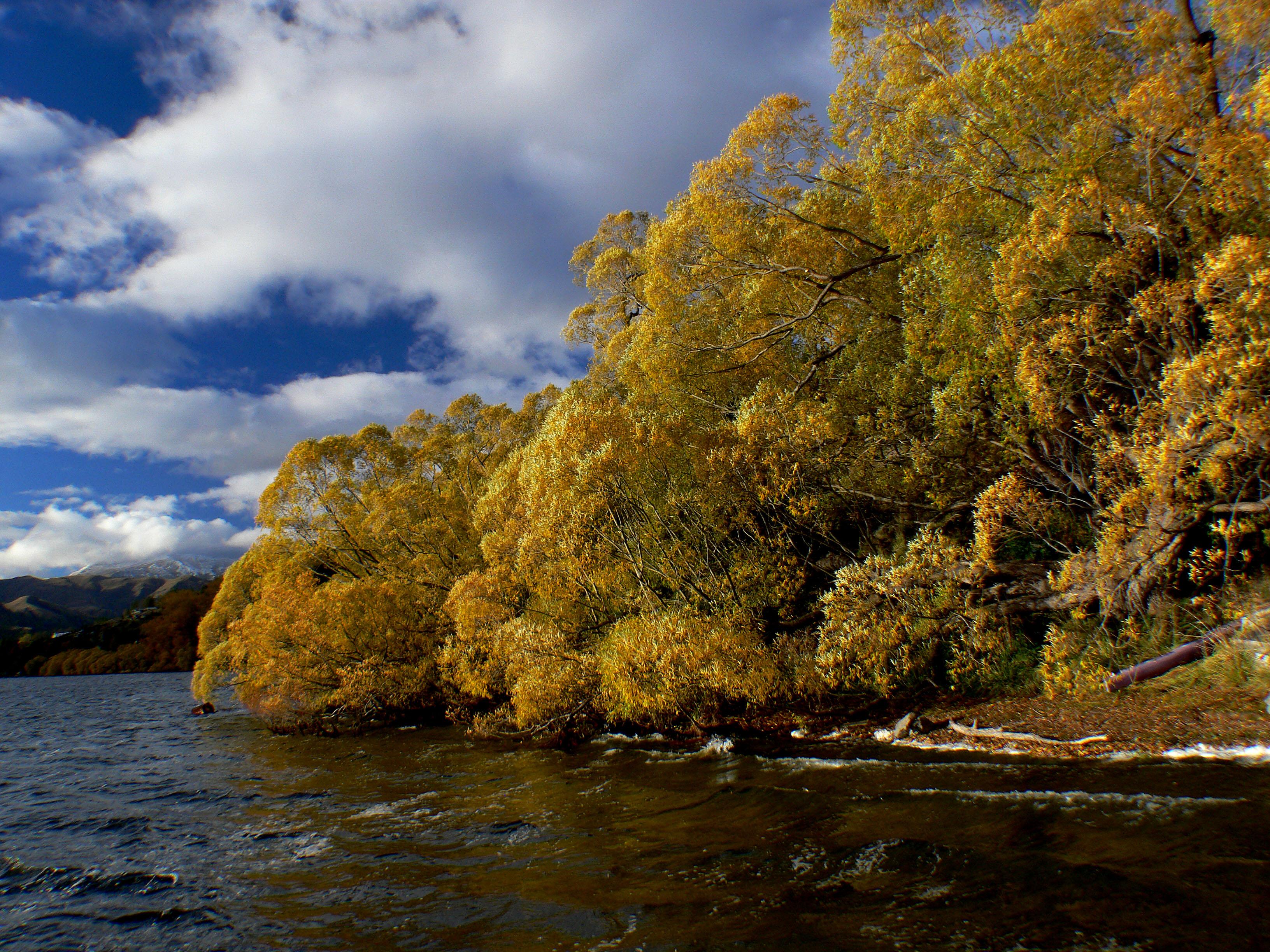 Lake hayes otago nz (6) photo