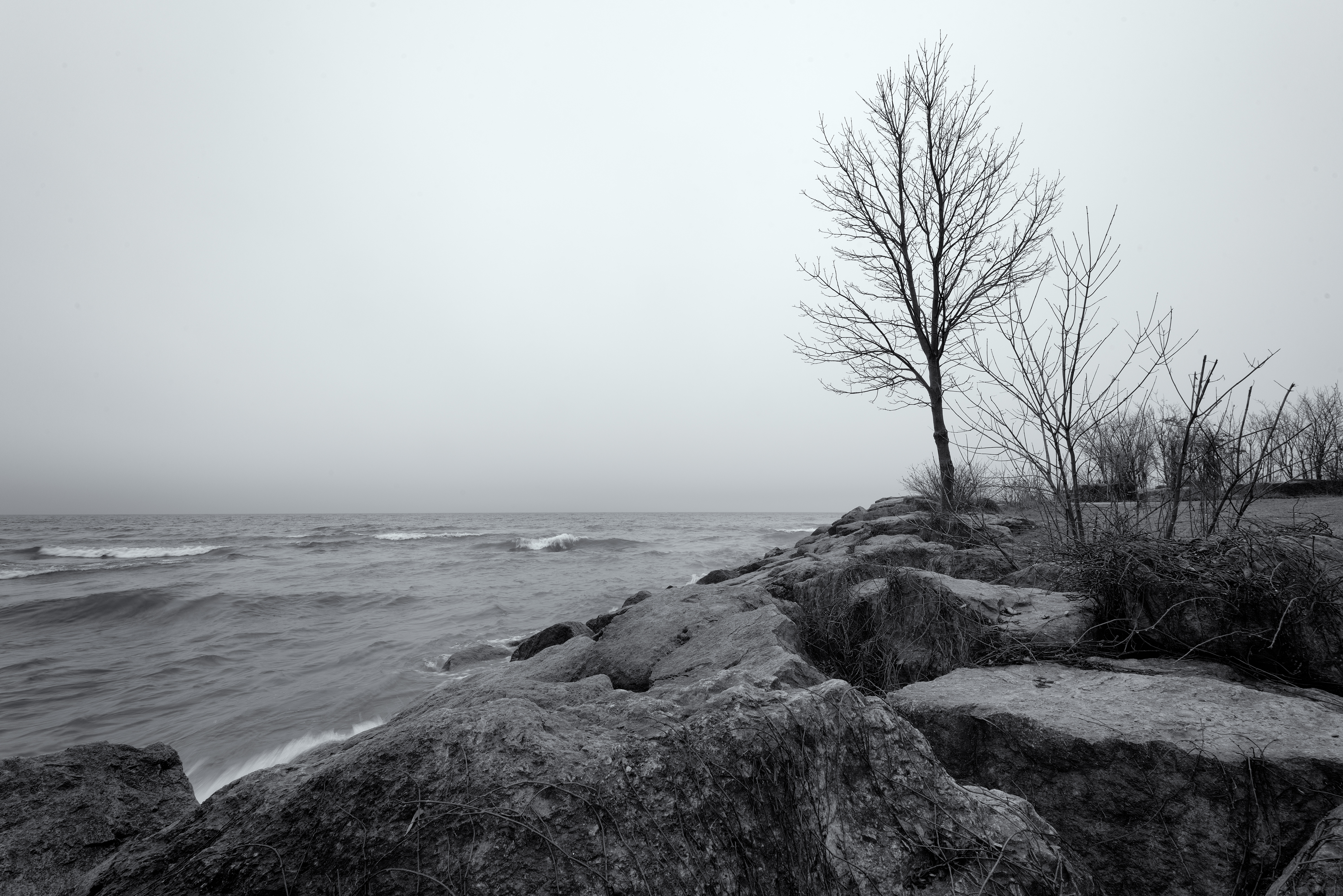 Lake ontario shoreline photo