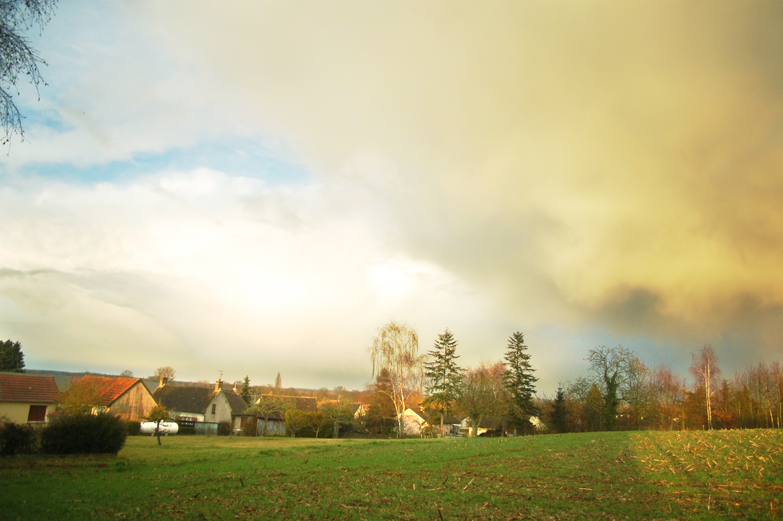 Landscape, Beautiful, Grass, Village, Trees, HQ Photo