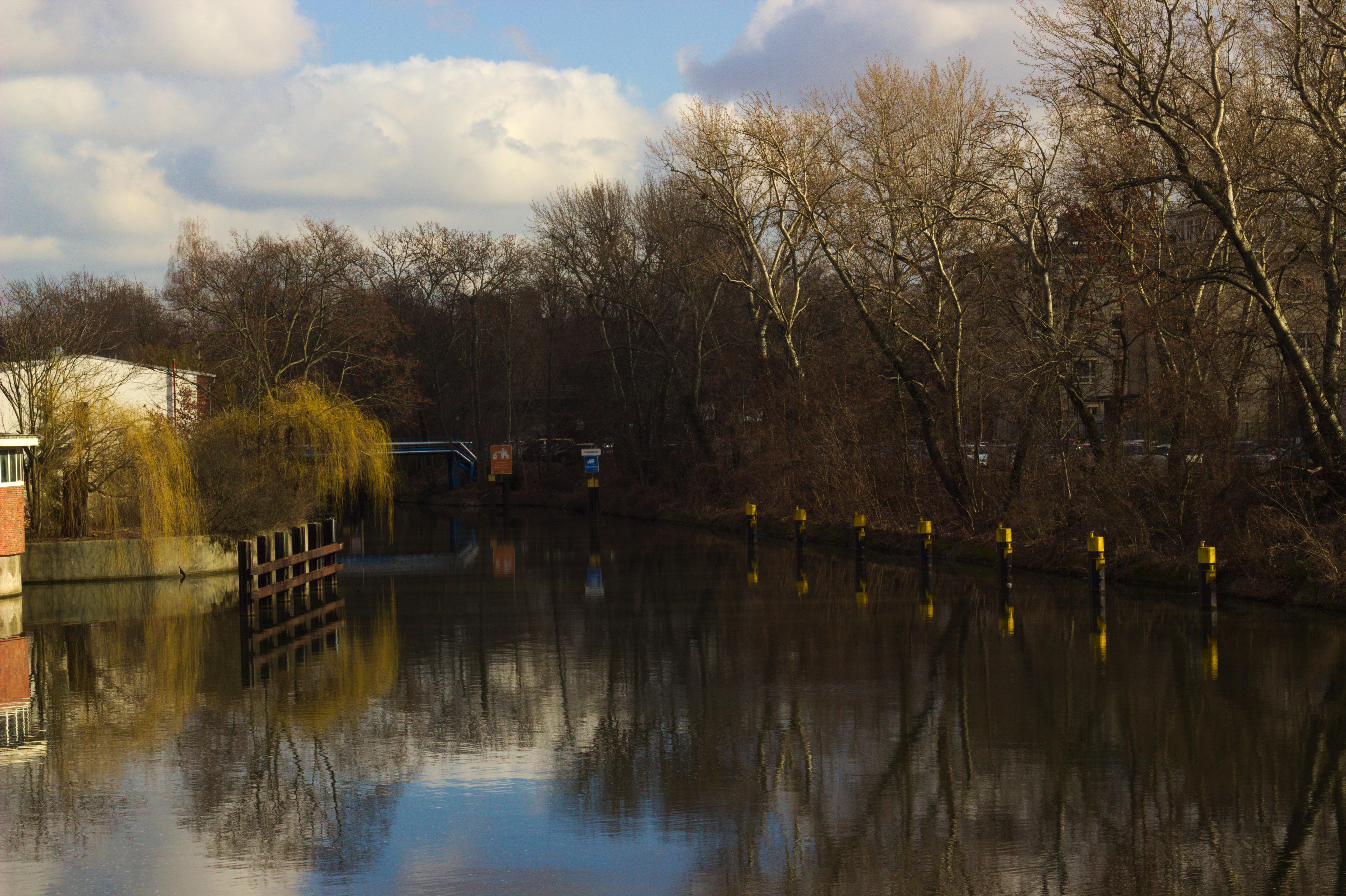 Landwehr canal, tiergarten photo