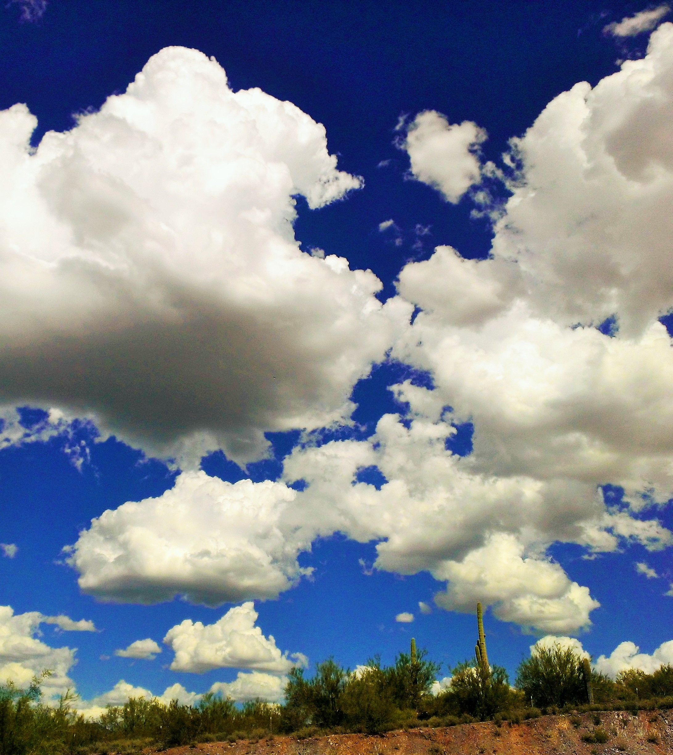 Beautiful white, puffy clouds against an awesome blue sky. These are ...