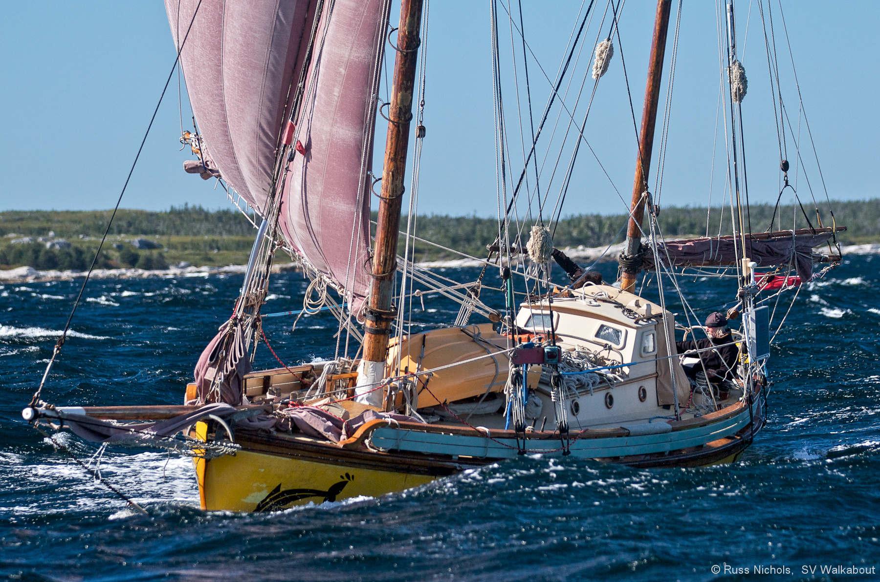 Sailing boats photo