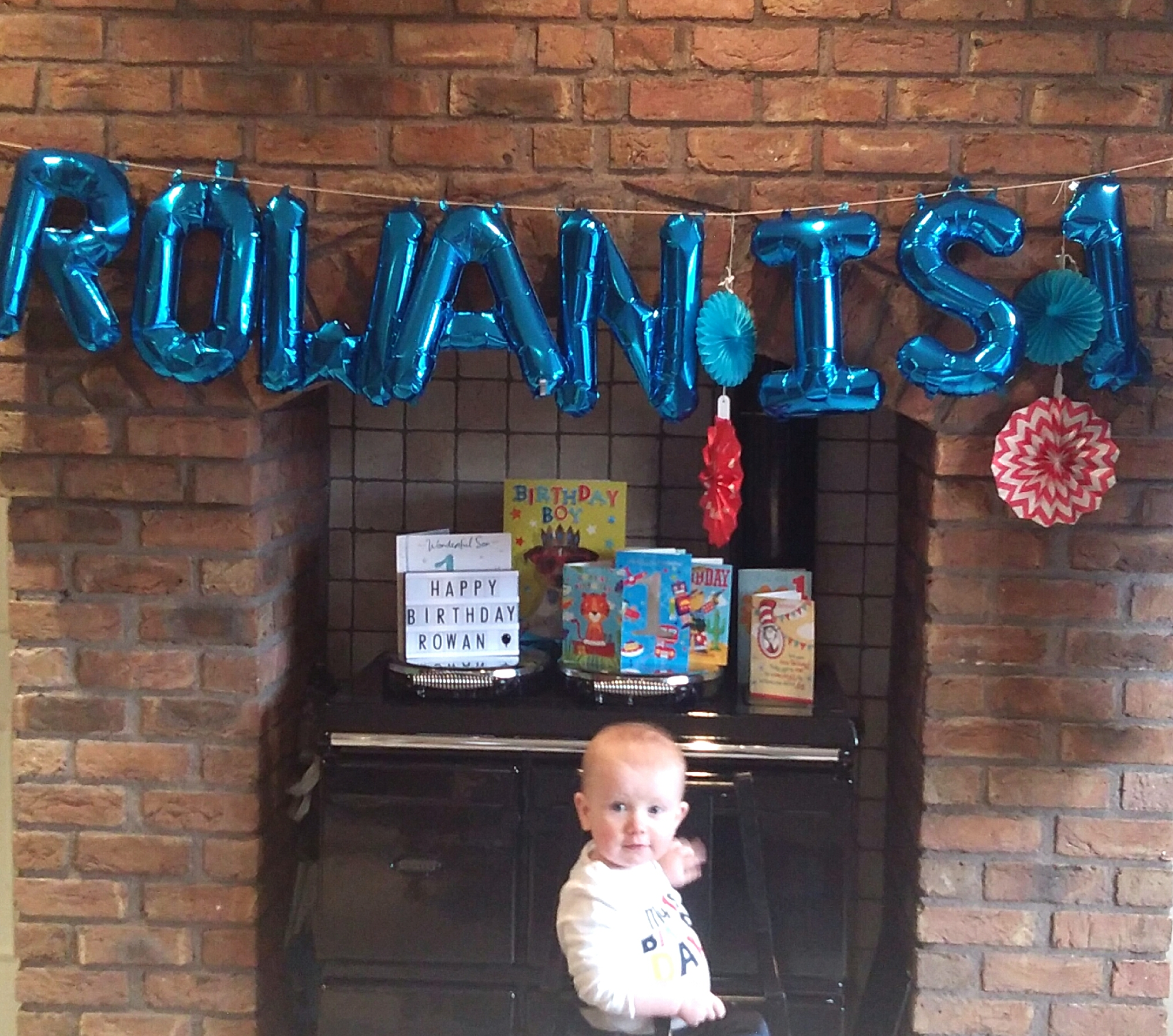 Dr. Seuss Themed First Birthday Party - Rowan Turns One