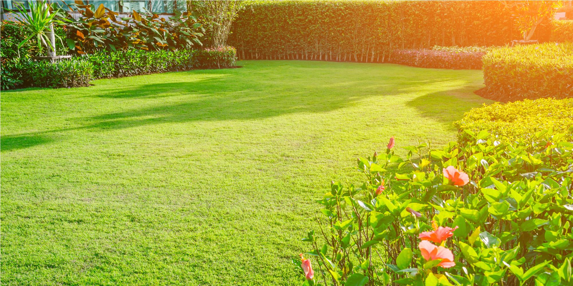 Lawn Maintenance - 4 Tips to a Greener Lawn - On the Write Side