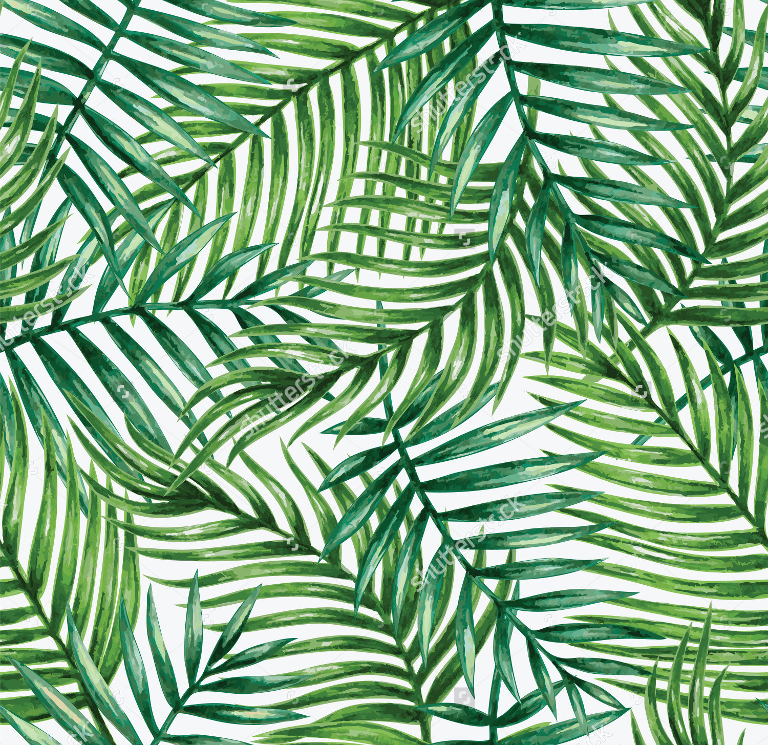 Pattern from leaves photo