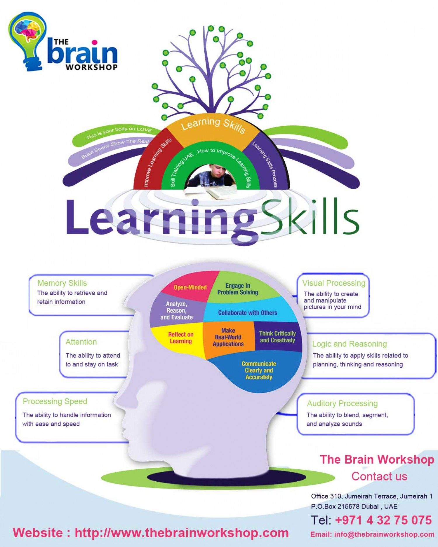 Learning Skills Process Infographic   Learning Skills   Pinterest ...