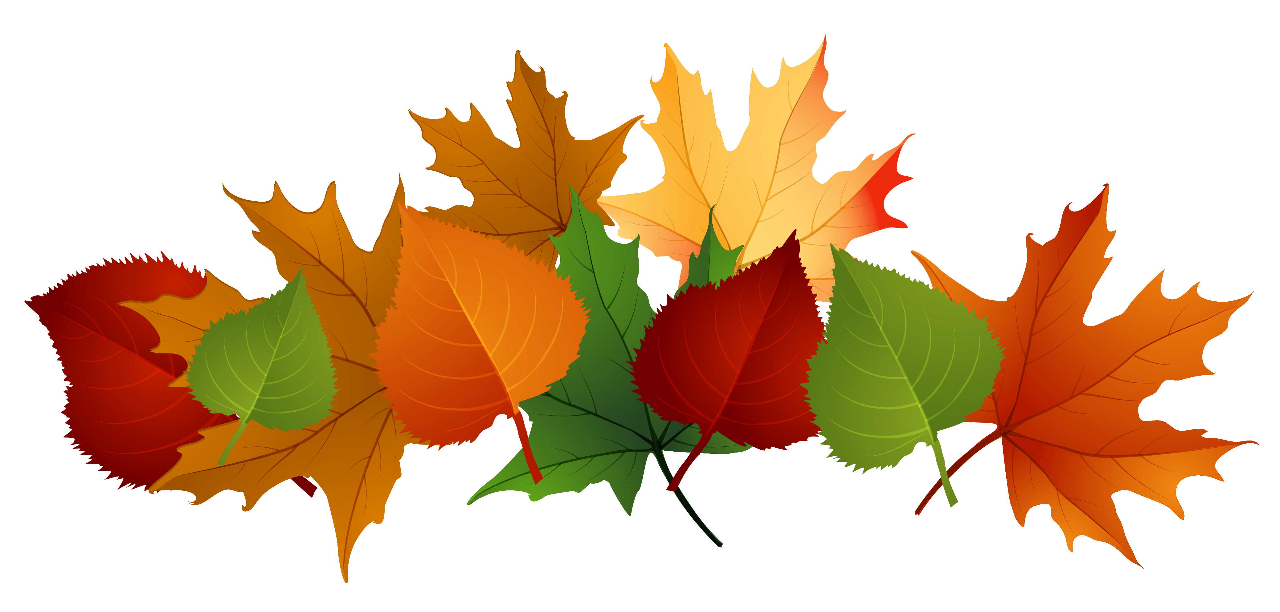 Fall Leaves PNG Picture | Gallery Yopriceville - High-Quality ...