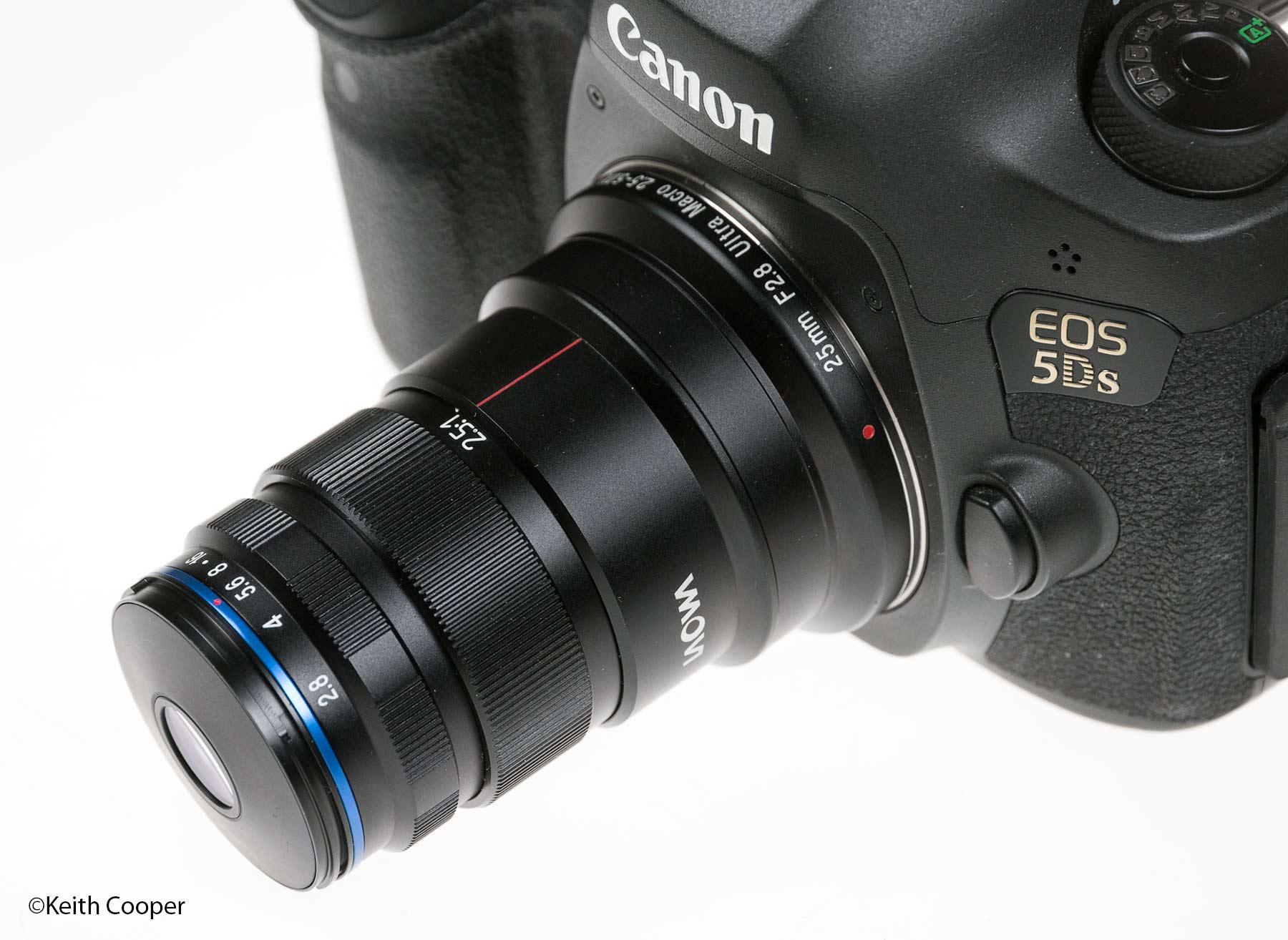 Laowa 25mm f/2.8 2.5x - 5x Ultra Macro lens review
