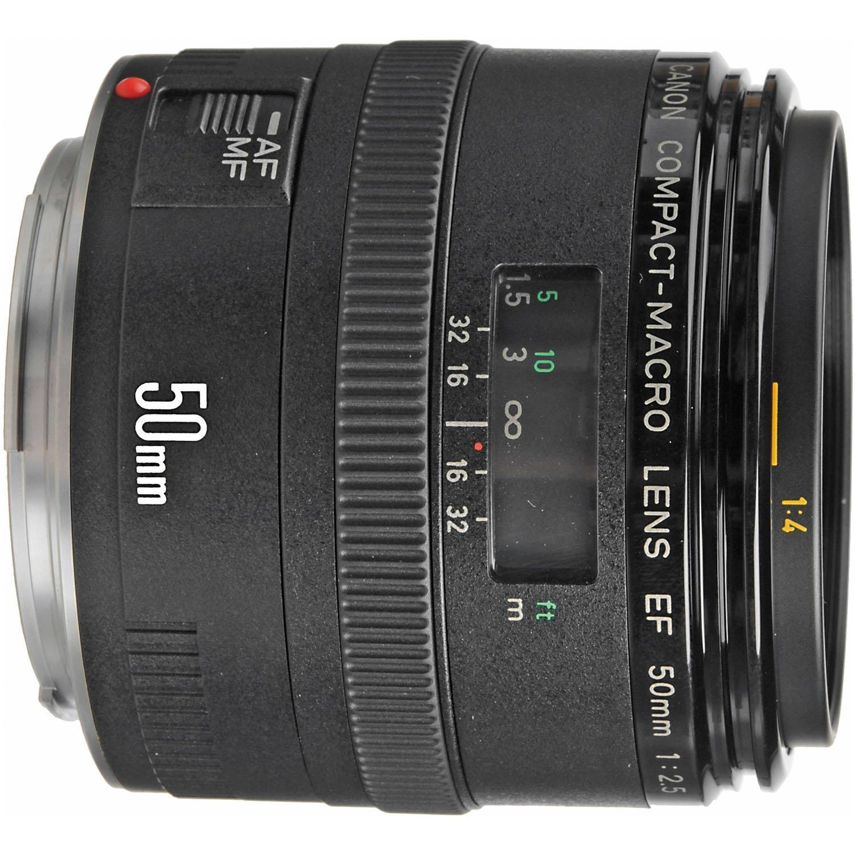 Amazon.com : Canon EF 50mm f/2.5 Compact Macro Lens : Macro Lens ...