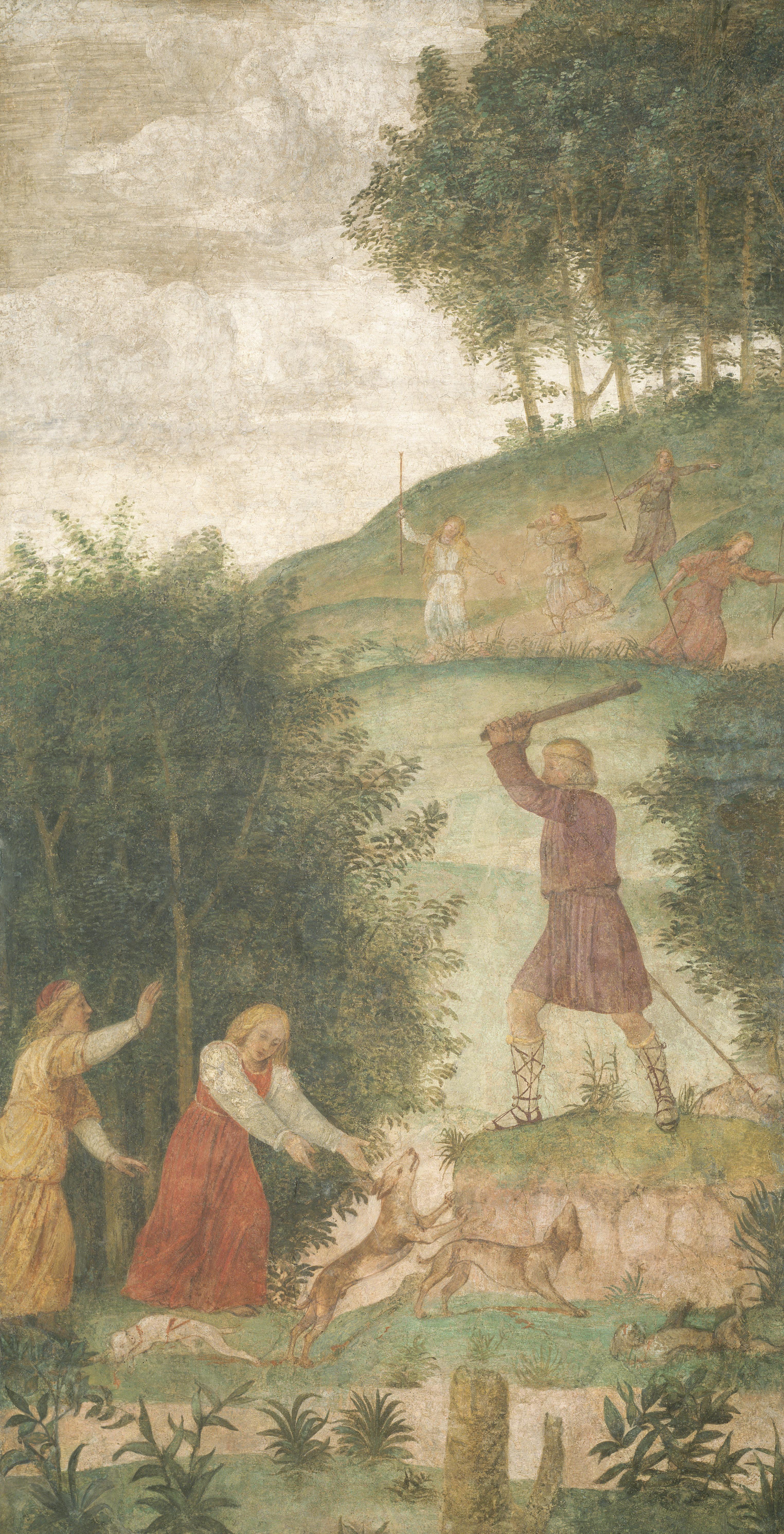 Leonardo da Vinci Artwork, Anatomical, Paints, Florence, Genius, HQ Photo