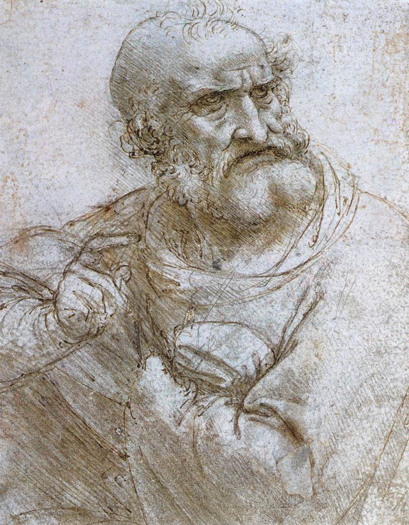 Leonardo da Vinci Sketch, Anatomical, Paints, Florence, Genius, HQ Photo