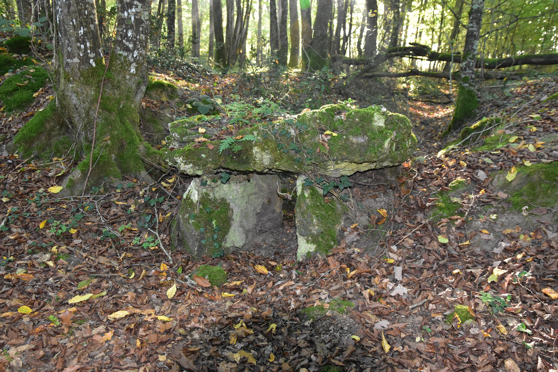Les chirons noirs (voir l'itinéraire sur : http://ansozour.free.fr/enbalade.html) photo