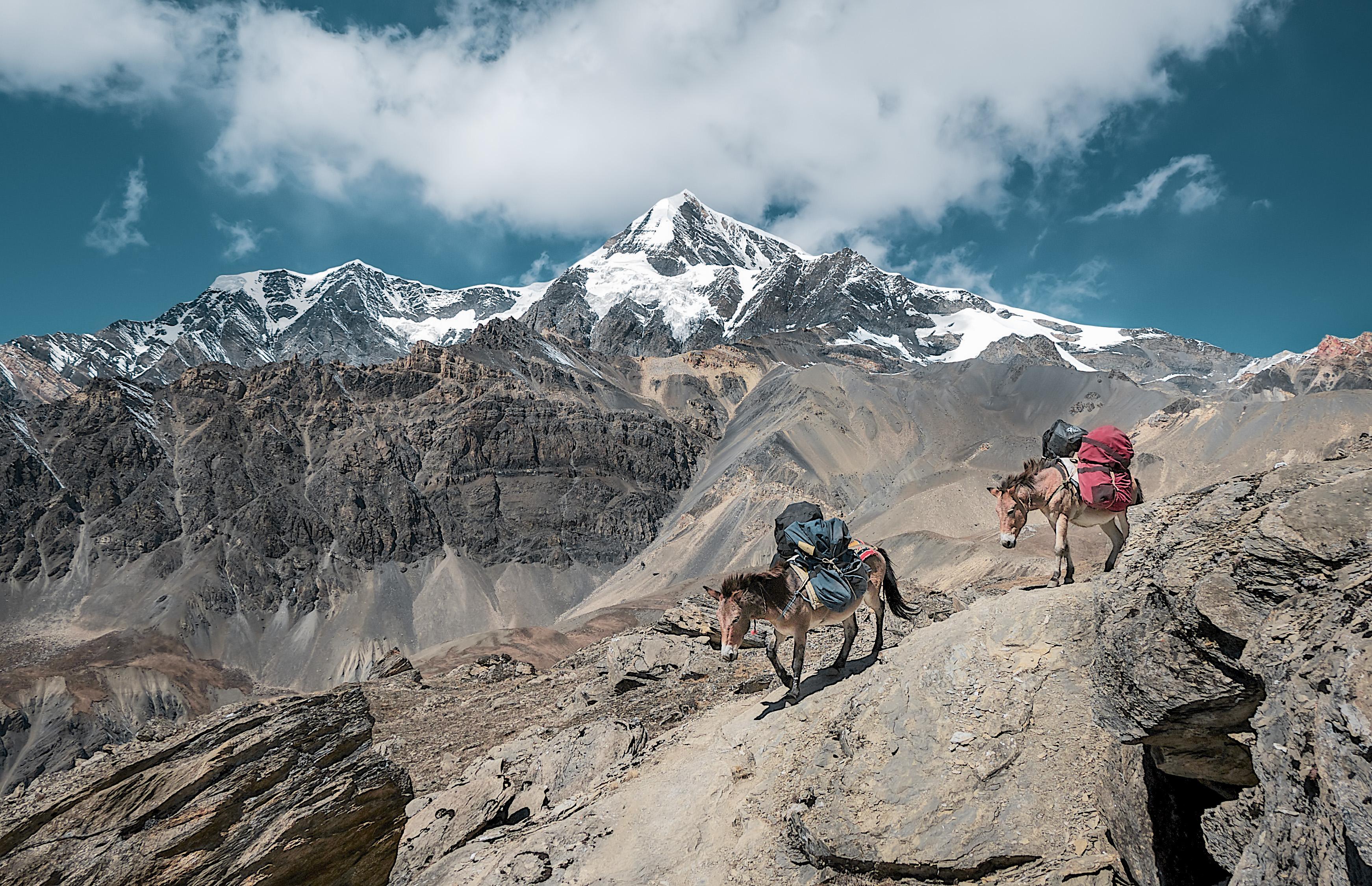 Let´s go hiking., Asia, Landscape, Mountain, Mountainside, HQ Photo