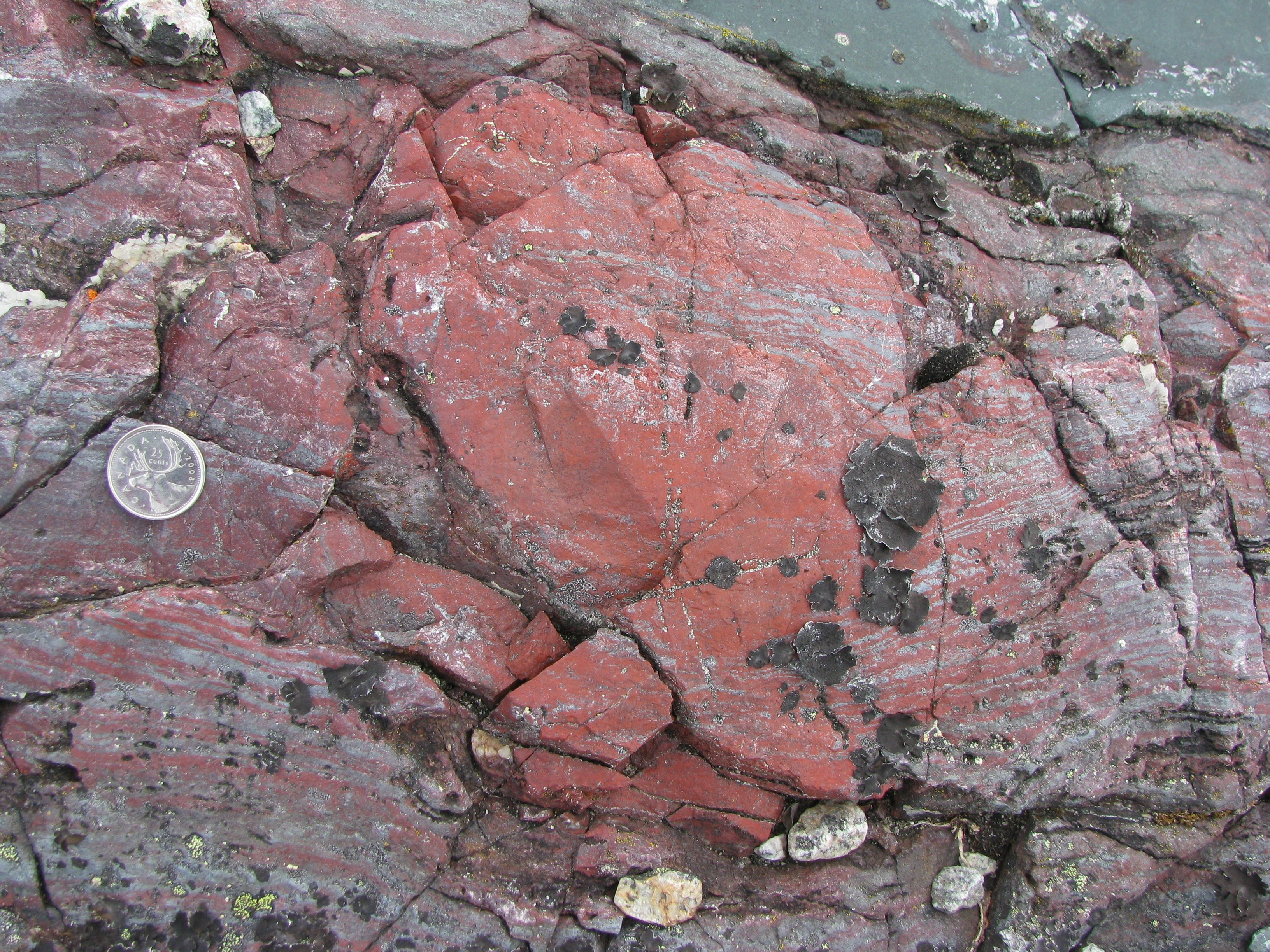 Scientists have found the oldest evidence of life in microfossils ...