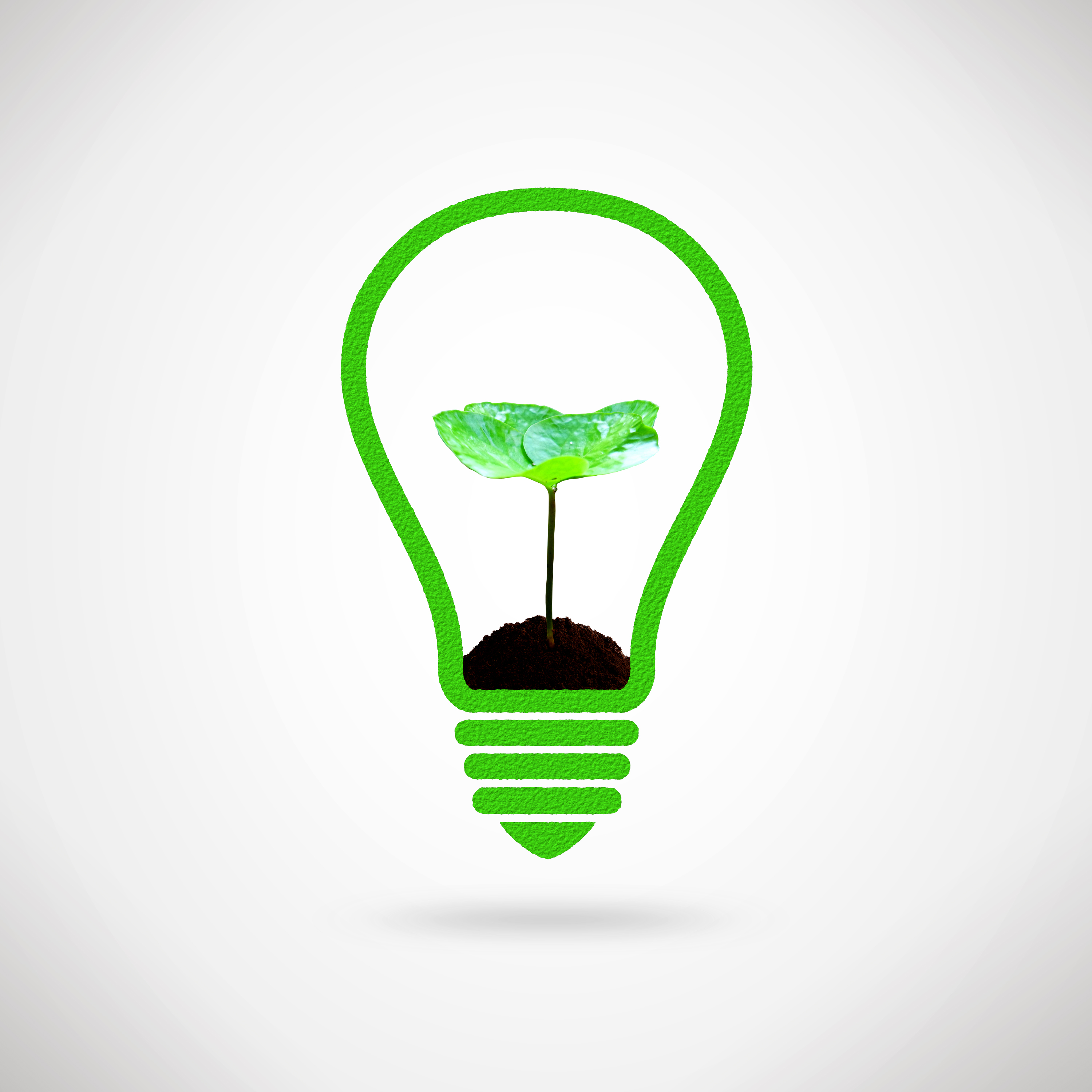 Lightbulb and plant sprout - ecology and environment idea photo