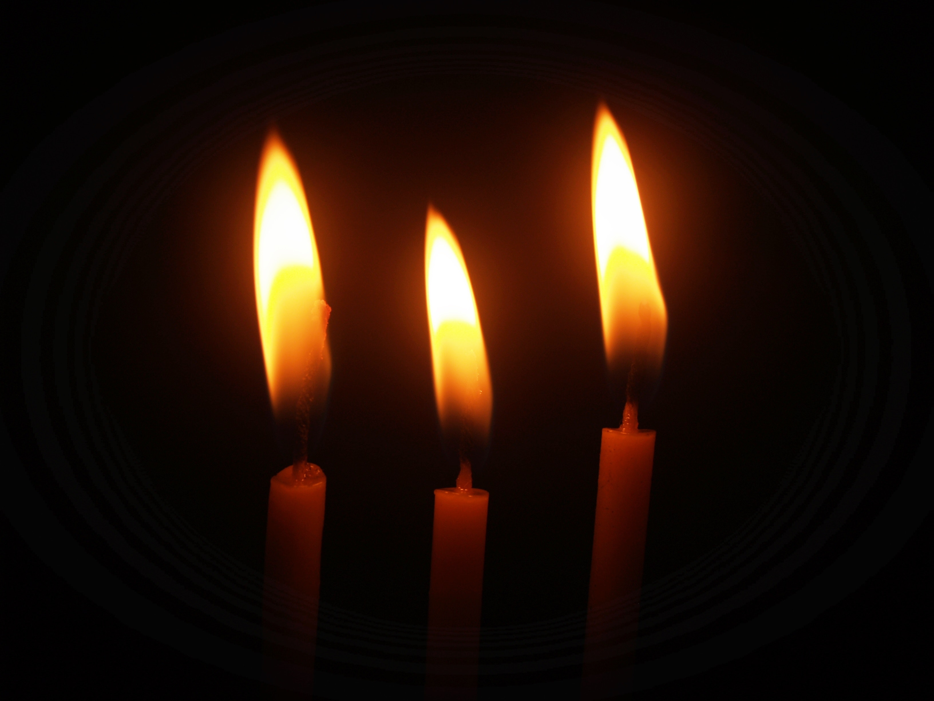 Lighted Candles, Burning, Candlelights, Candles, Close-up, HQ Photo