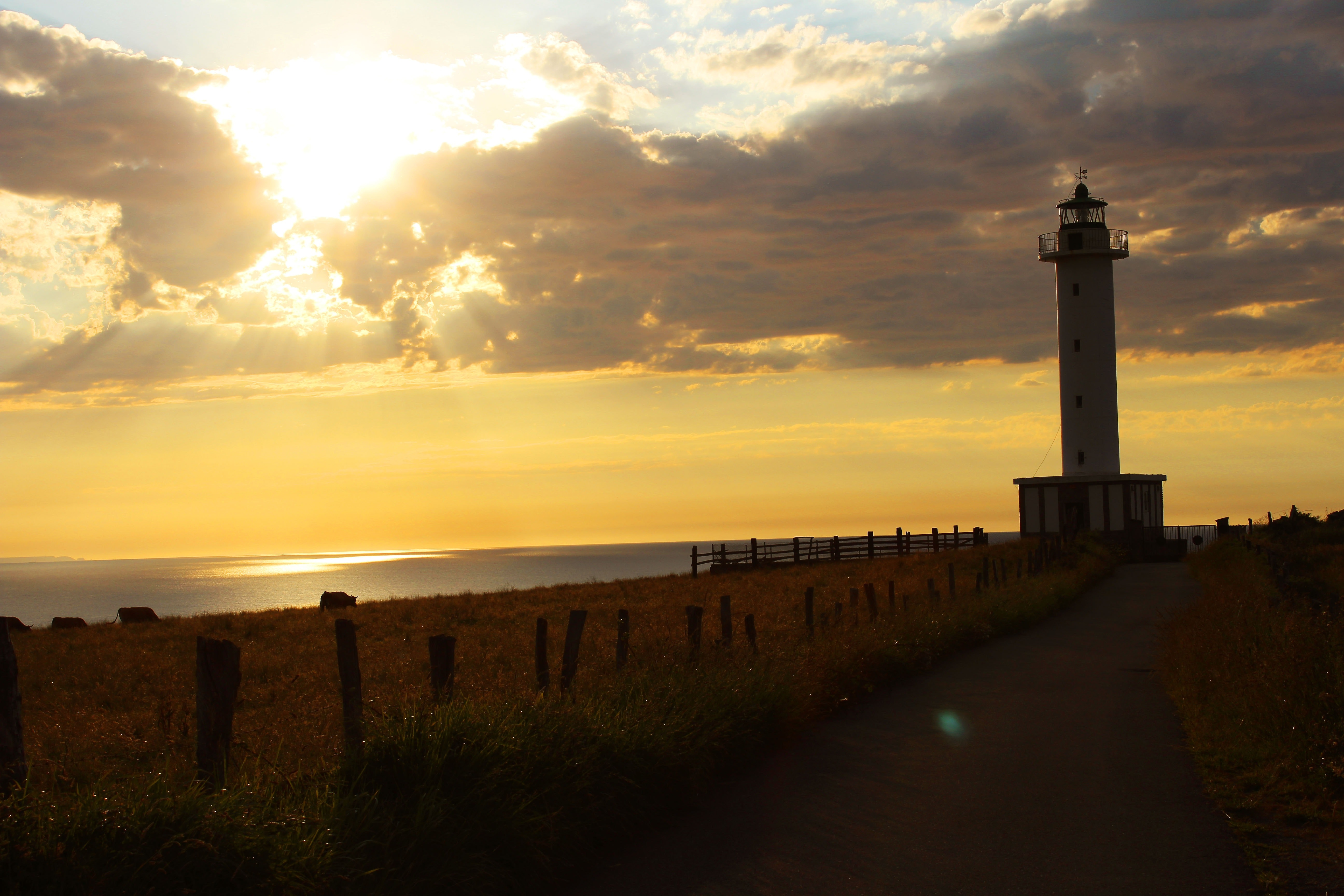 Lighthouse near ocean during golden hour photo