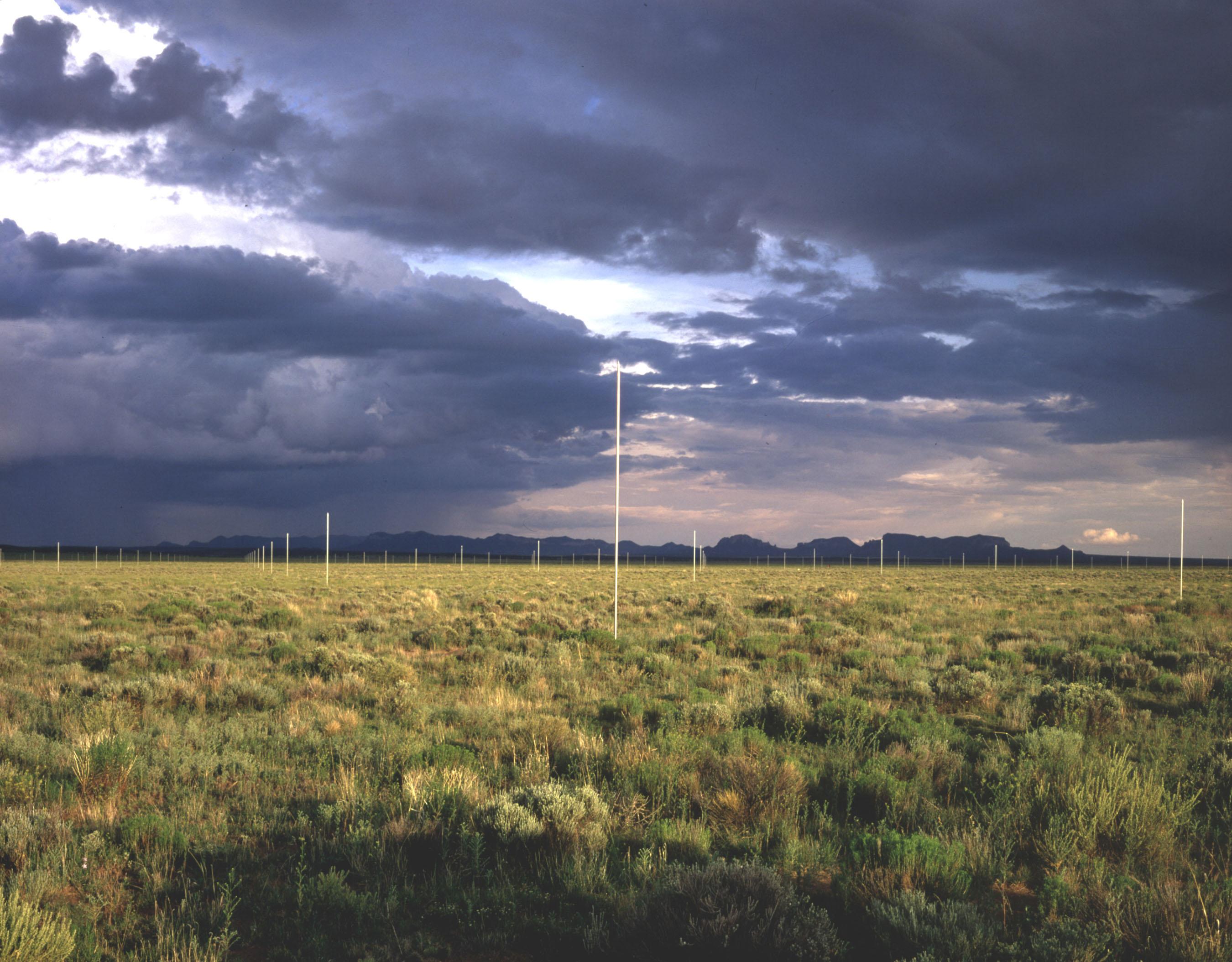 Walter De Maria the lightning field. He does earth art. He sets up ...