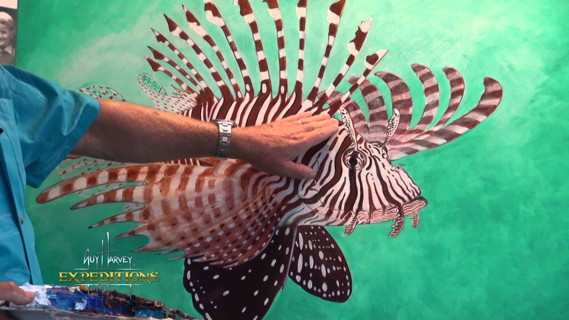 Lionfish and reproduction - the incredible statistics - YouTube