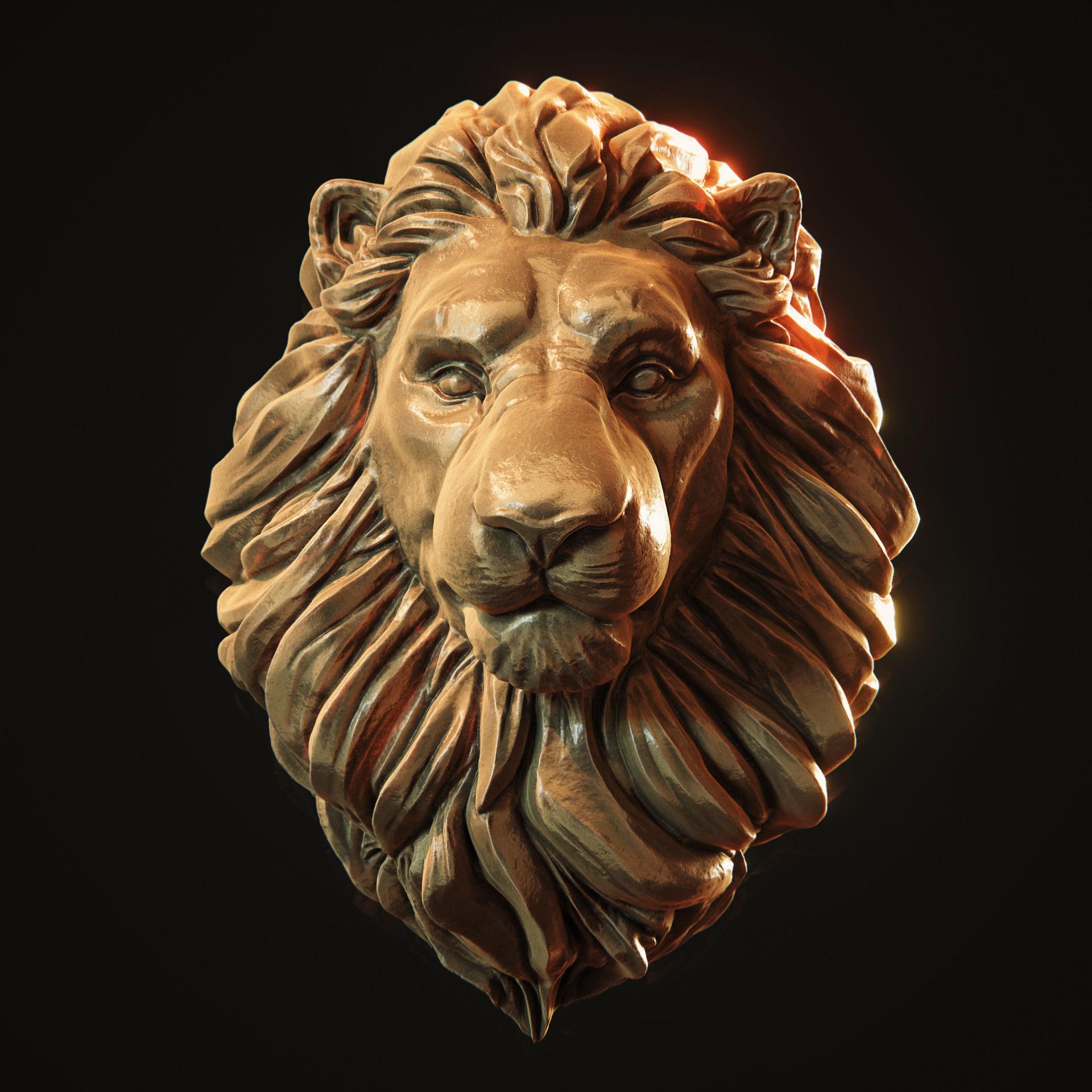 Free Photo: Lion Head