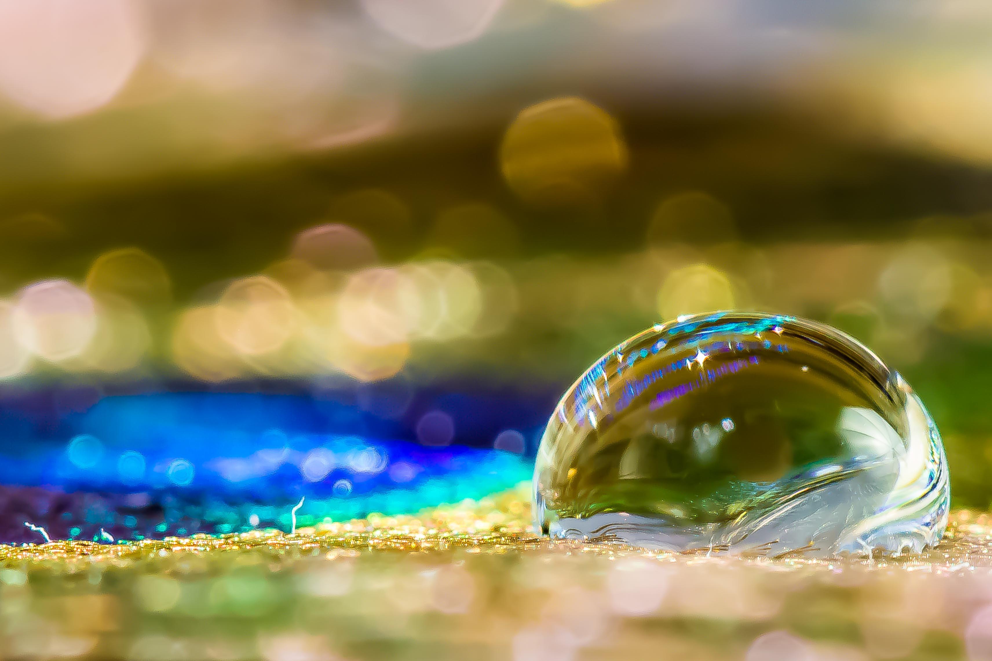 Liquid on perlhuhnfeder photo