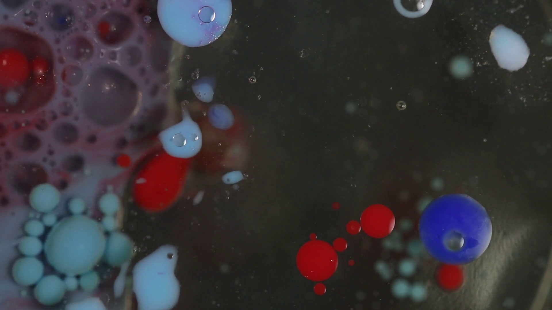 Cool shot of blue, red, and white liquids draining down the sink ...