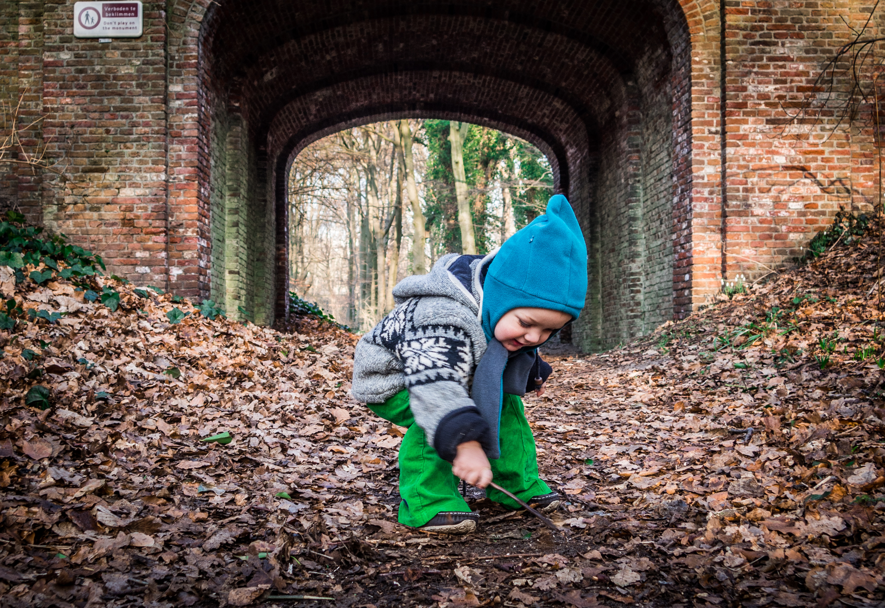 Little boy and autumn leaves photo