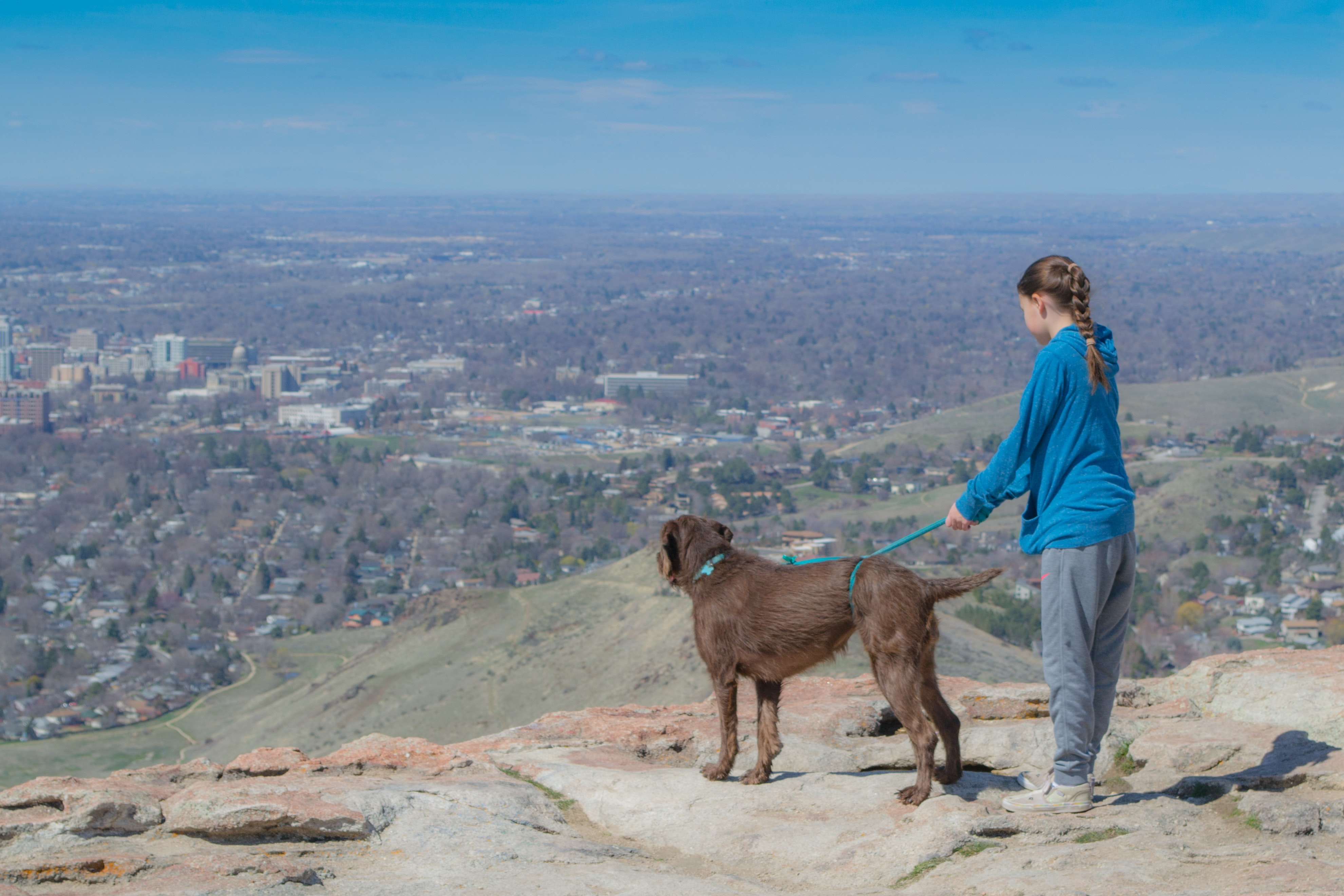Little girl with a big brown dog is standing near a cliff photo