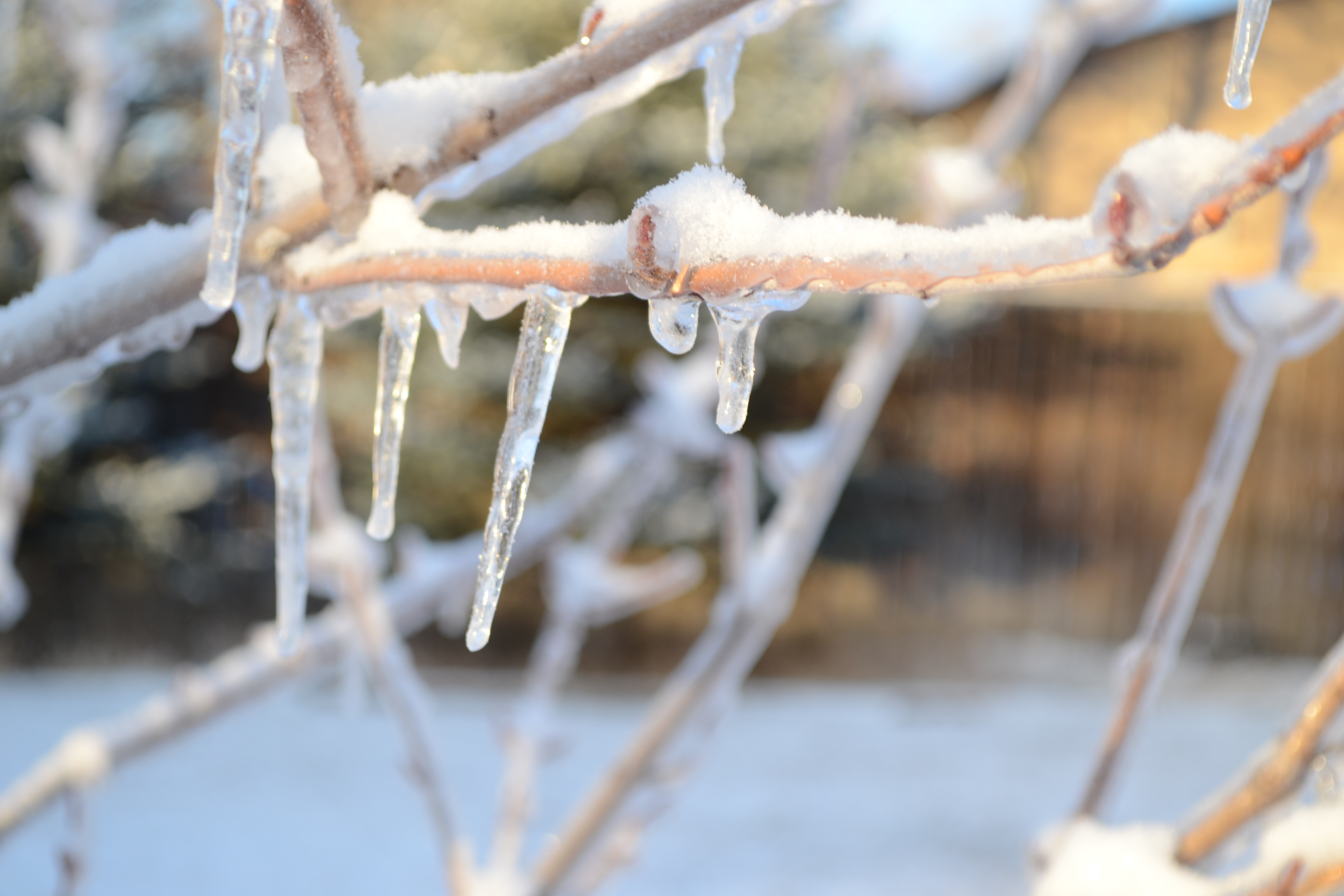 Making Icicles and Learning Science - Bring The Kids