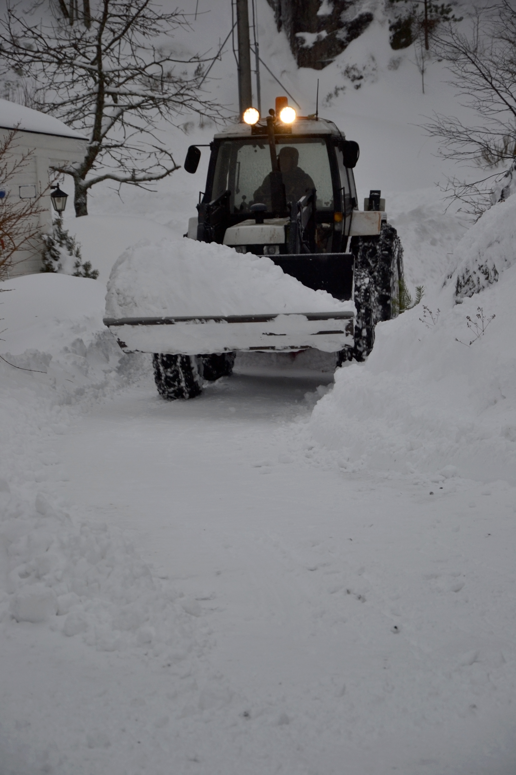 Loader clearing the snow photo