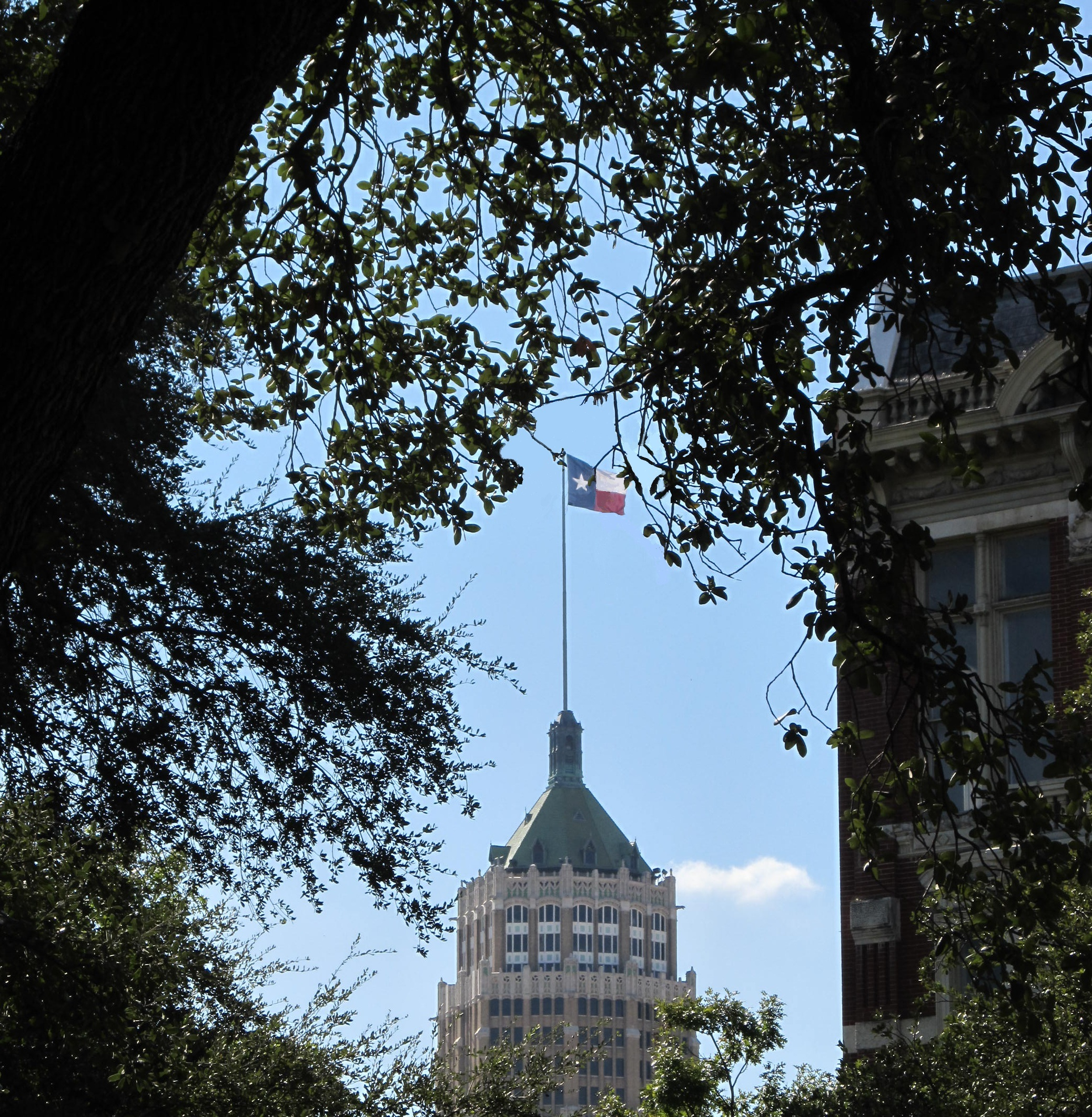 Lone star flag on the building photo