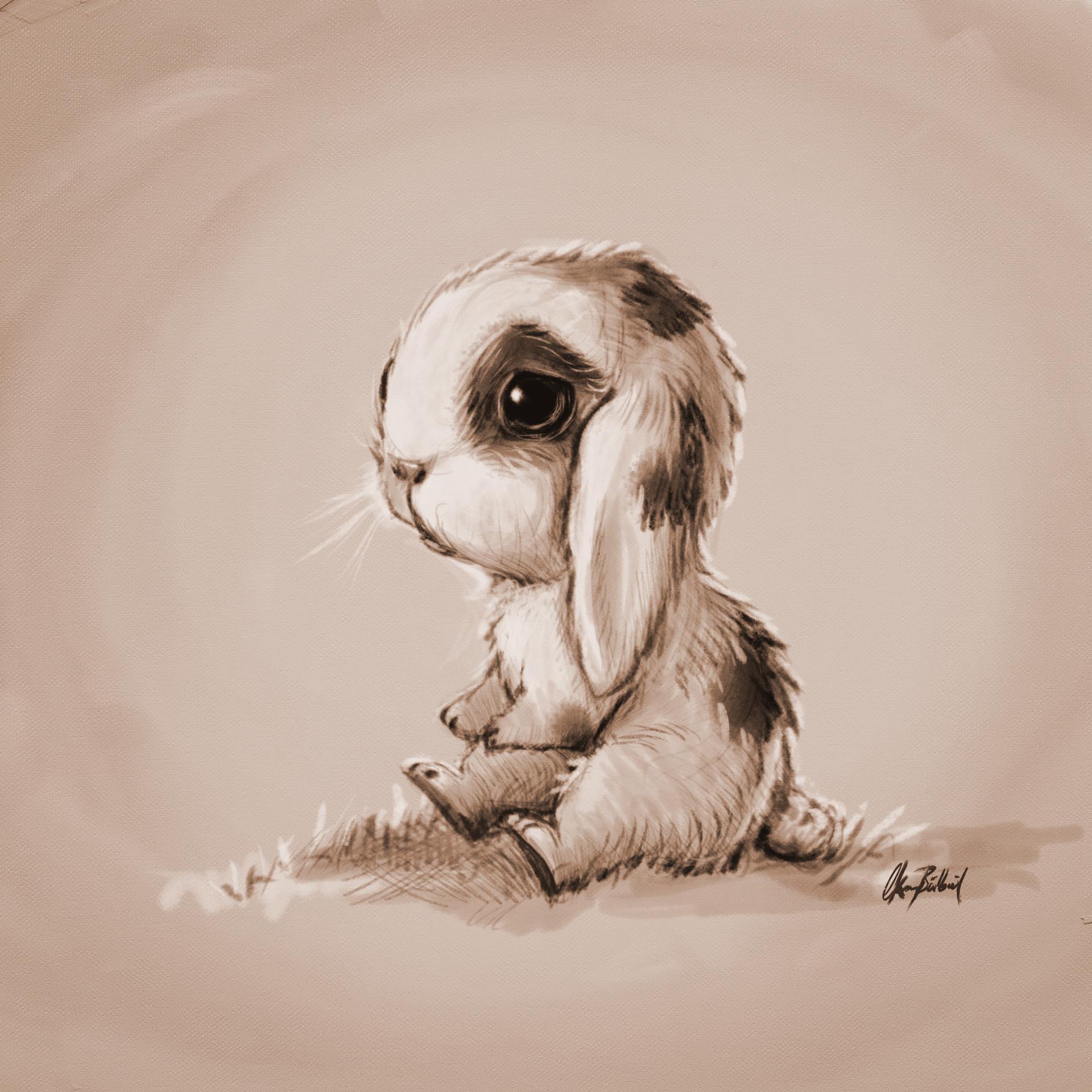 Lonely bunny photo
