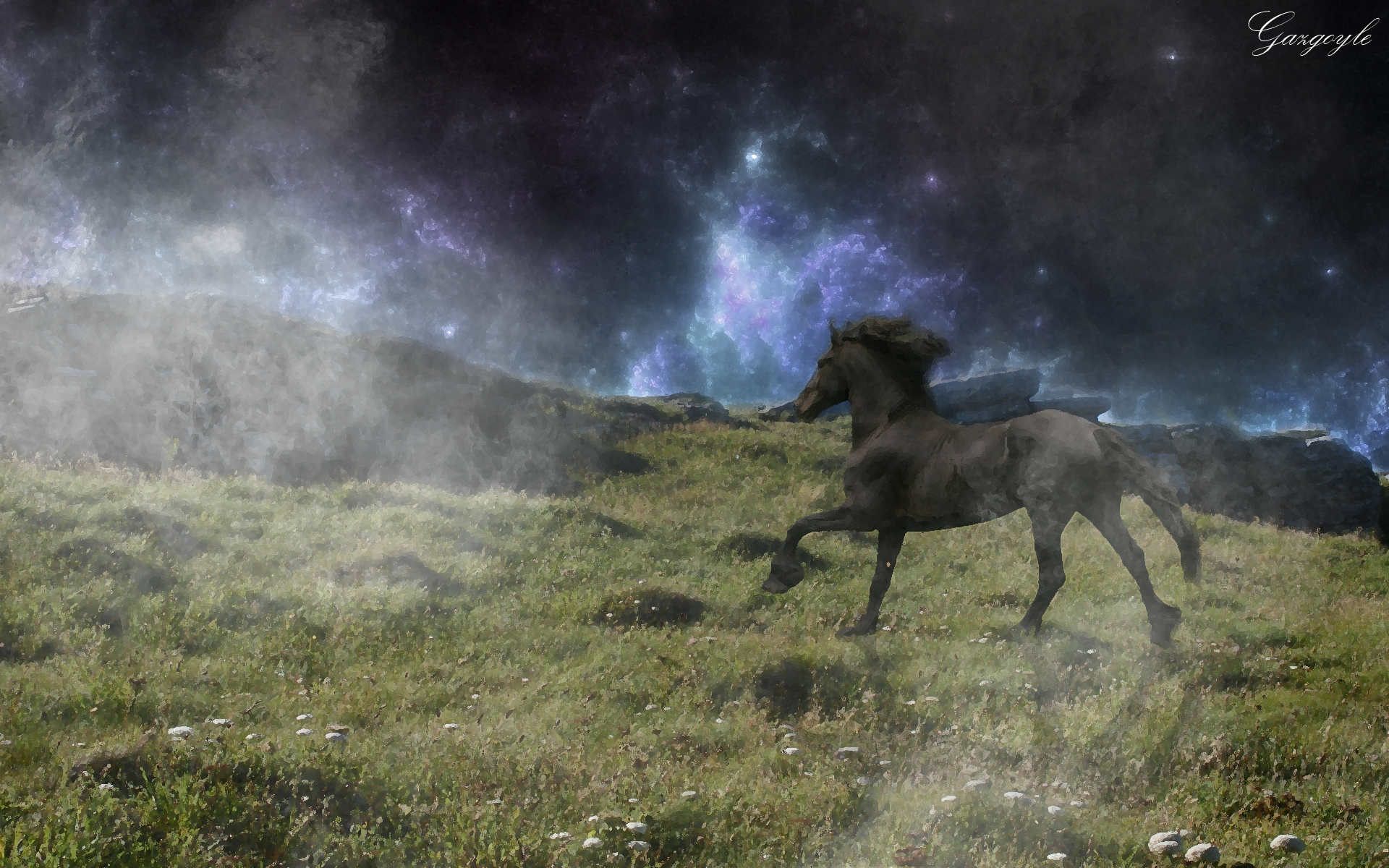 Lonely horse photo