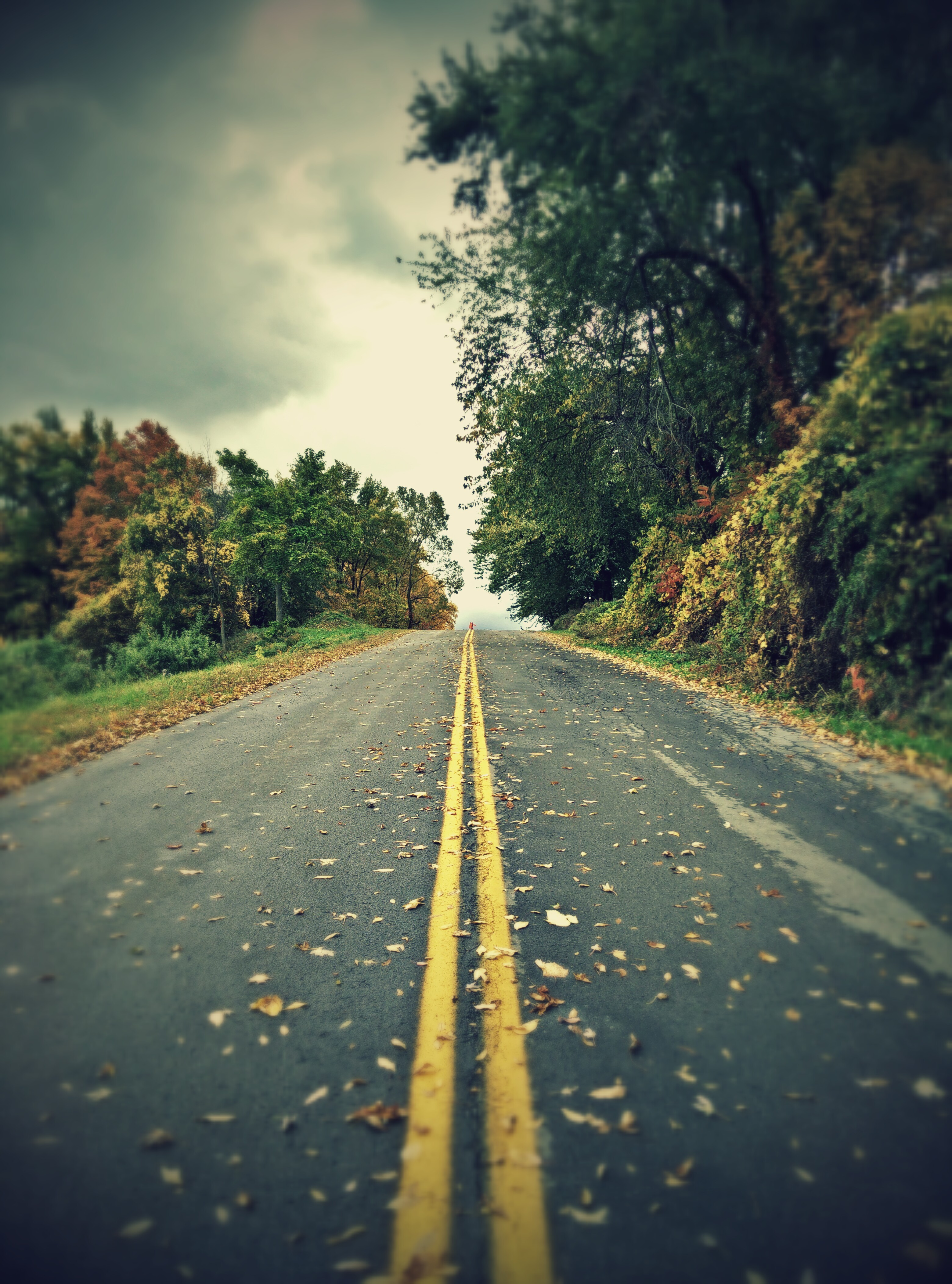 Lonely road photo