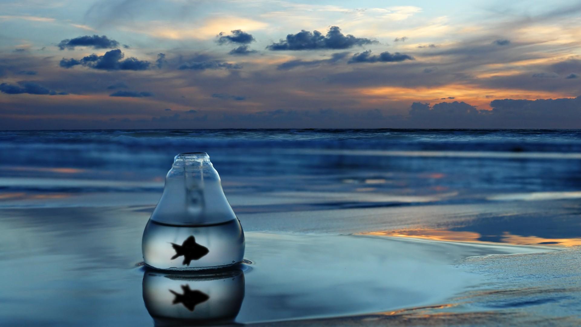 SimplyWallpapers.com: Fish fish tank ink lonely sea desktop bakcgrounds