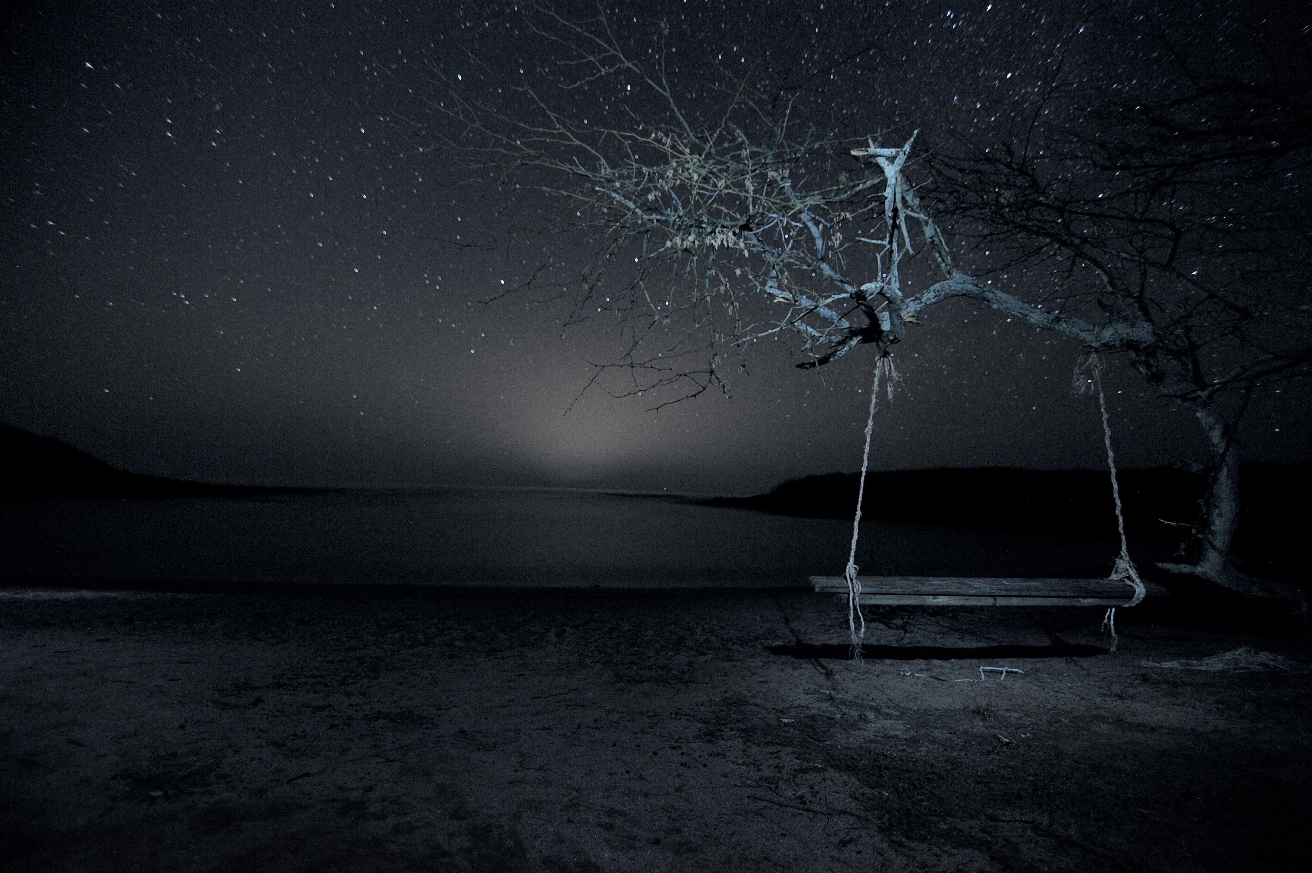 Molokai Lonely Swing | Bo Hakala