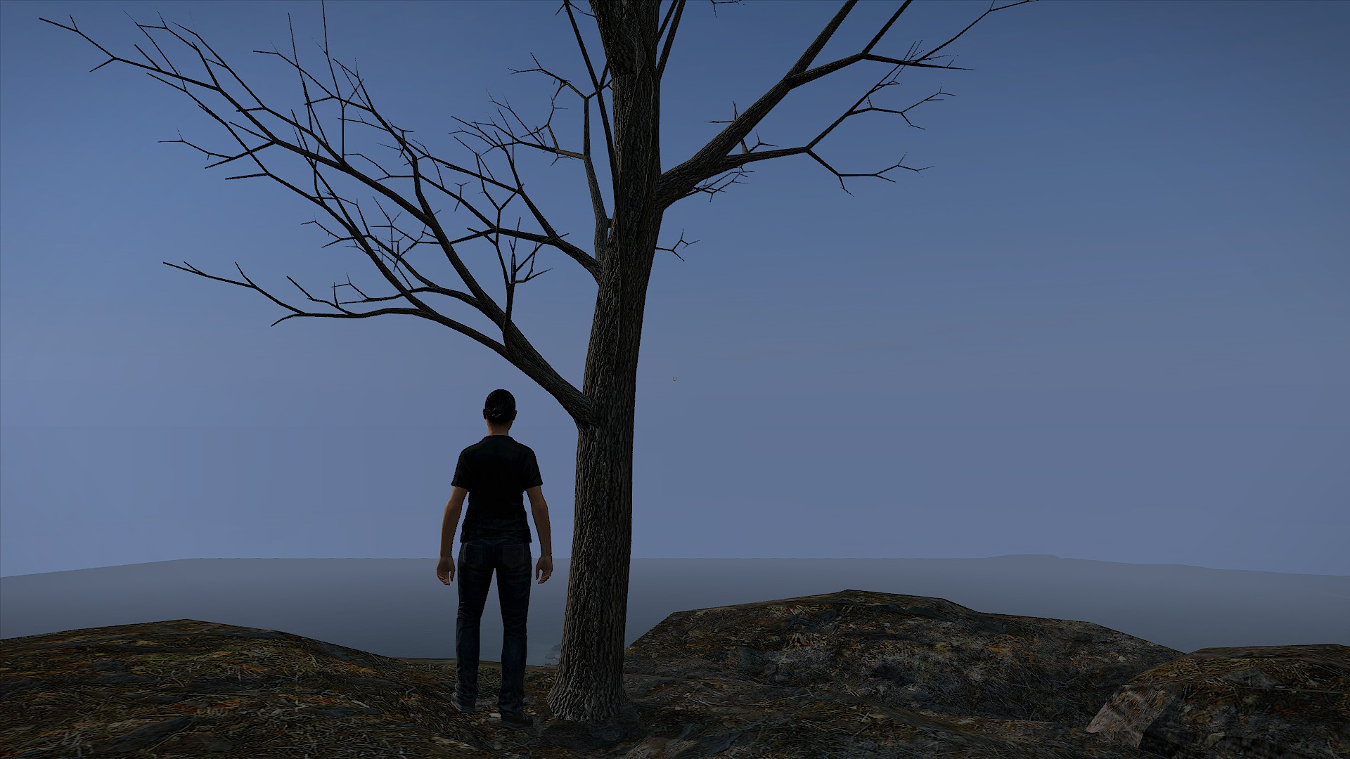 The Lonely Tree. - Dayz TV