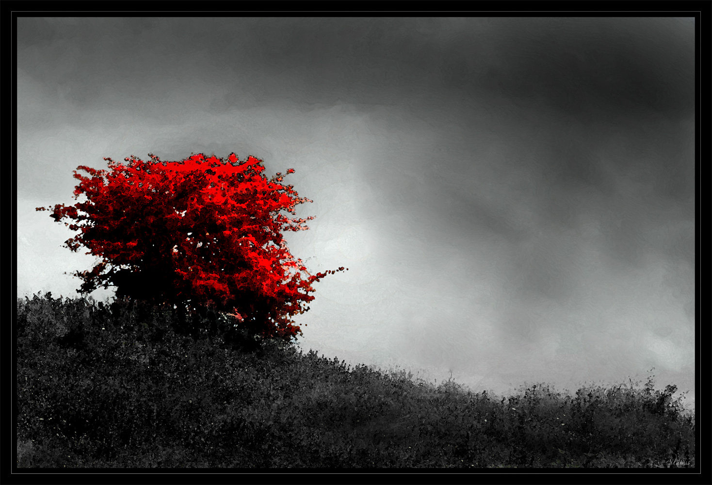 Lonely tree, Art, Clouds, Edited, Framed, HQ Photo
