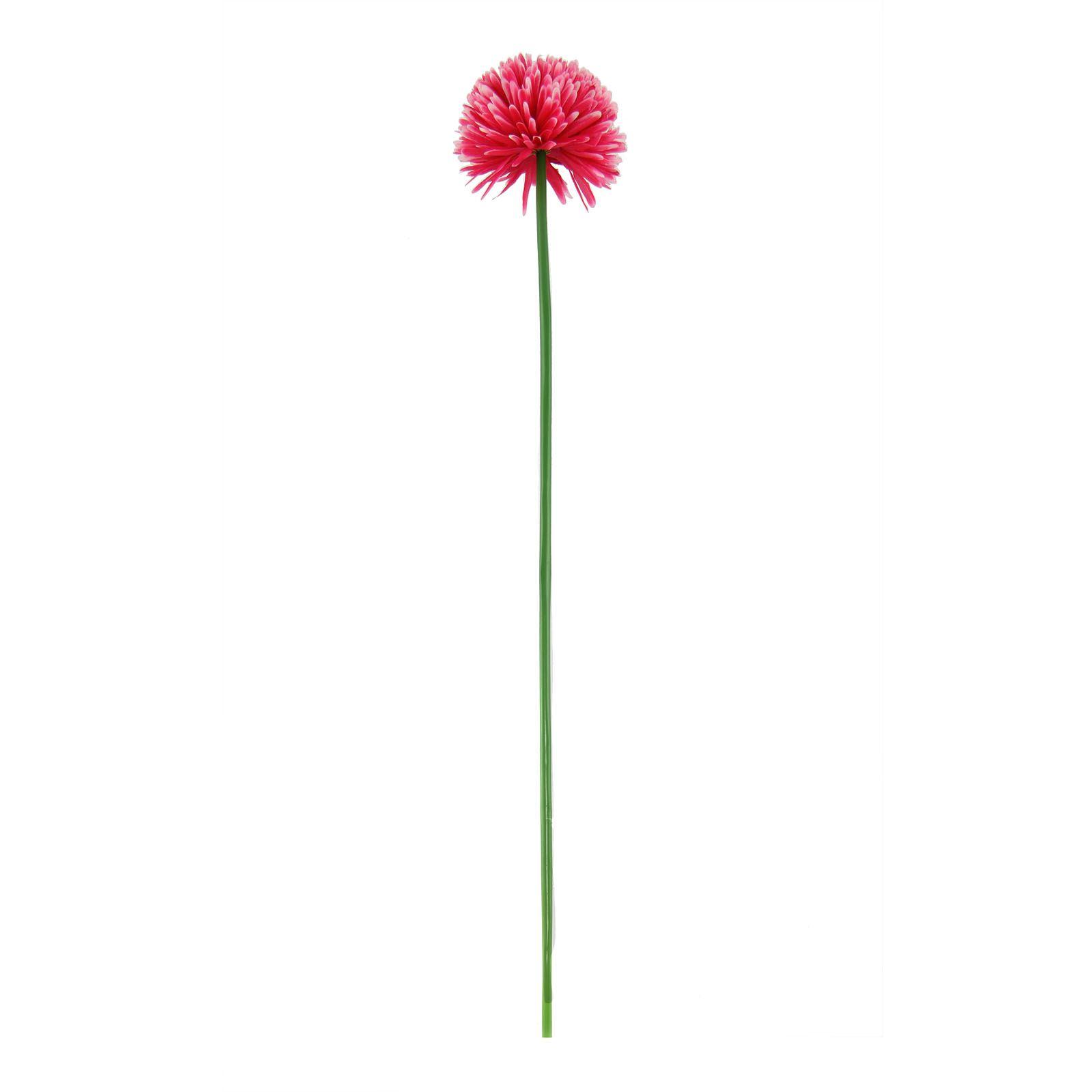 Long flower photo