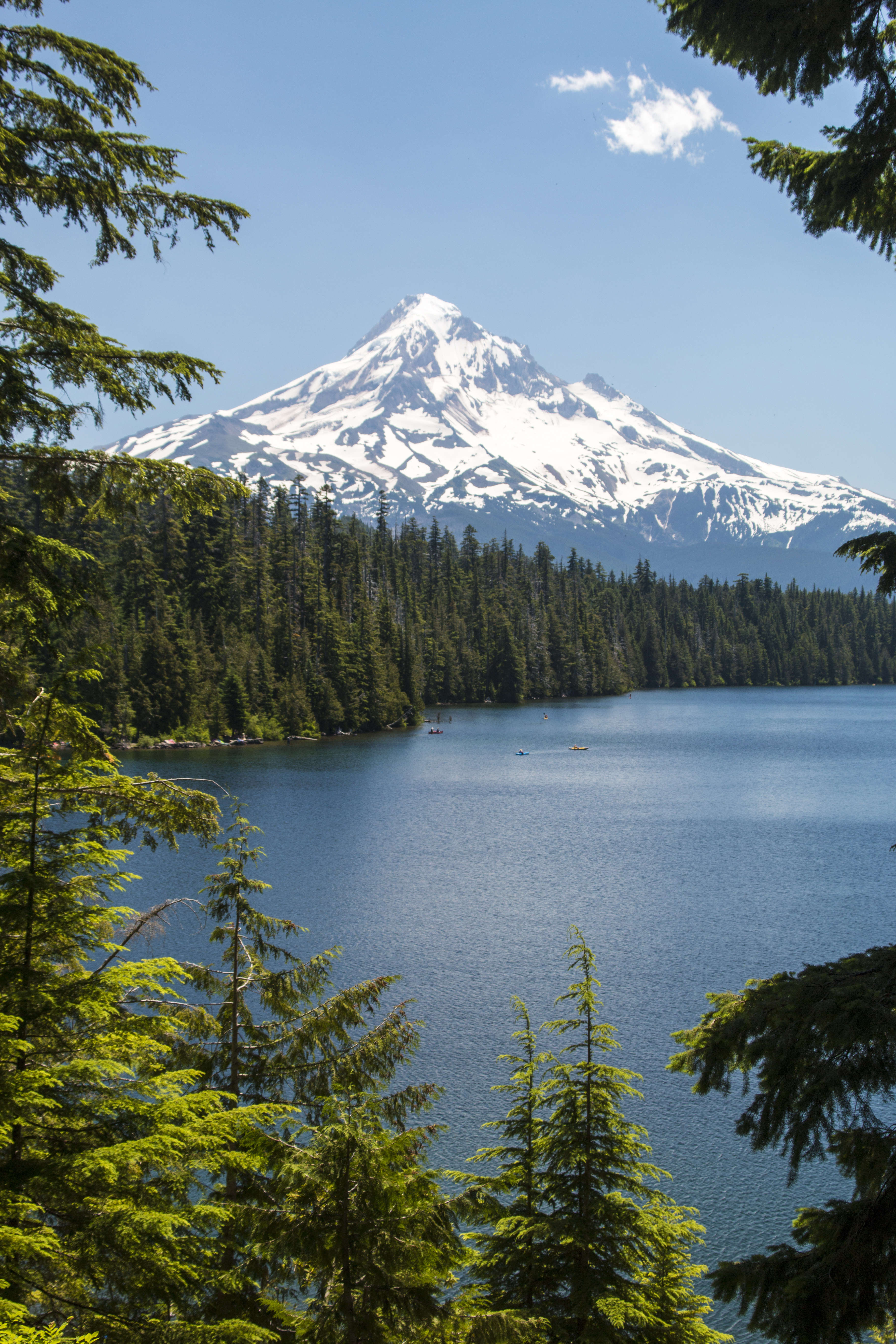 Lost Lake, Hood River County, Oregon, Mt. Hood in the Background, Forest, Lake, Landscape, Lost Lake, HQ Photo