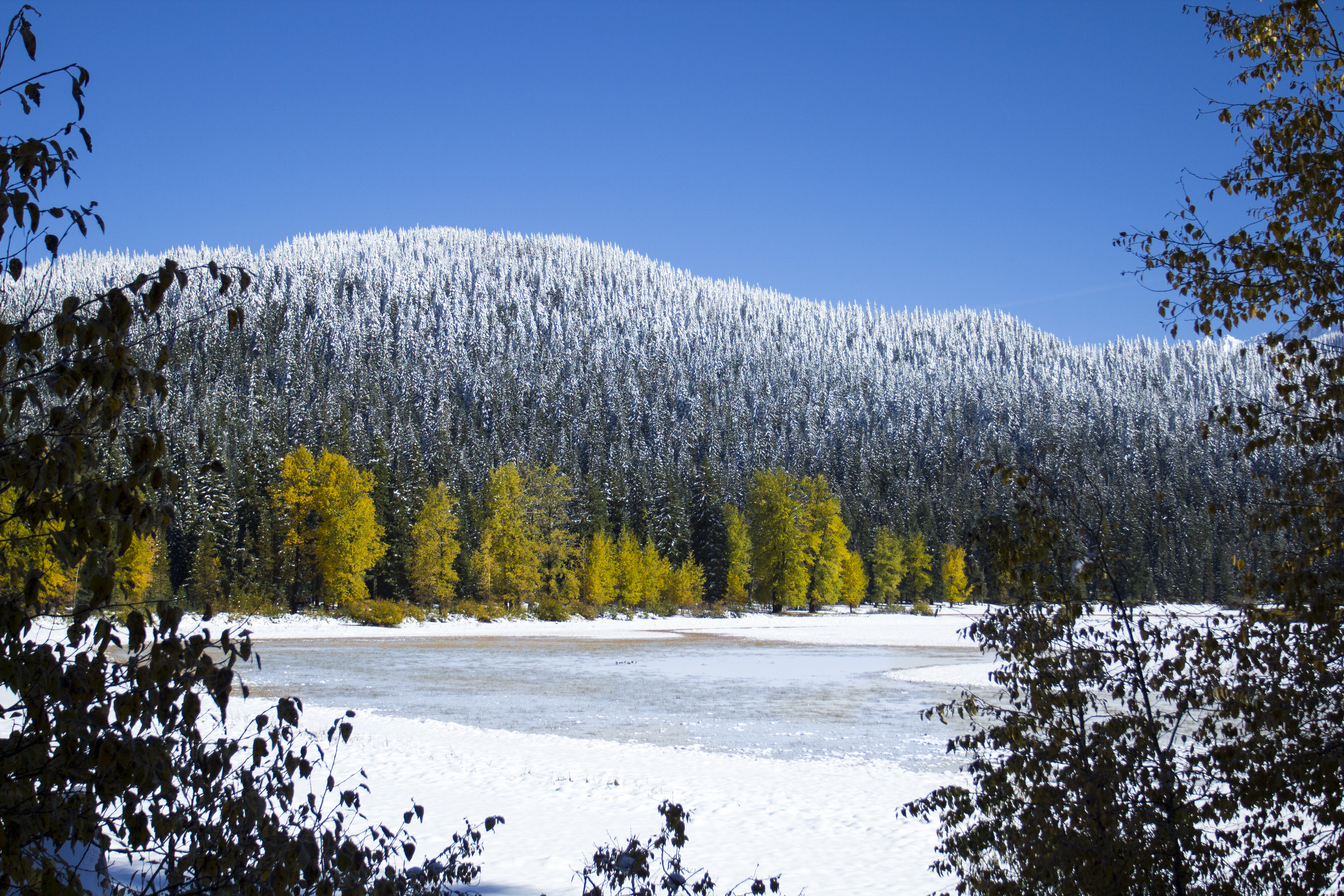 Lost lake in fall, first snow. oregon photo